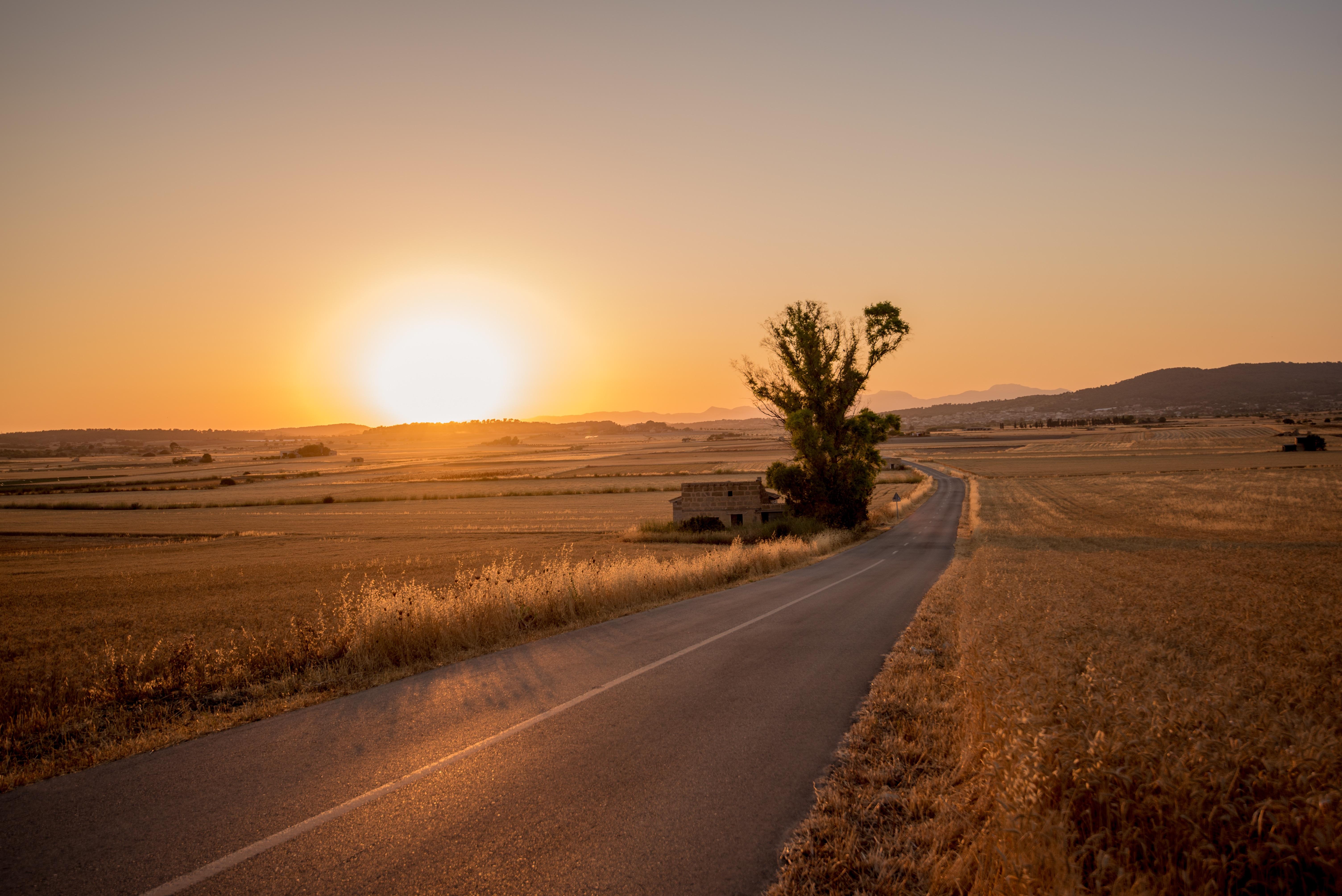 делается картинка дорога в пустыне изделиях гипса, что