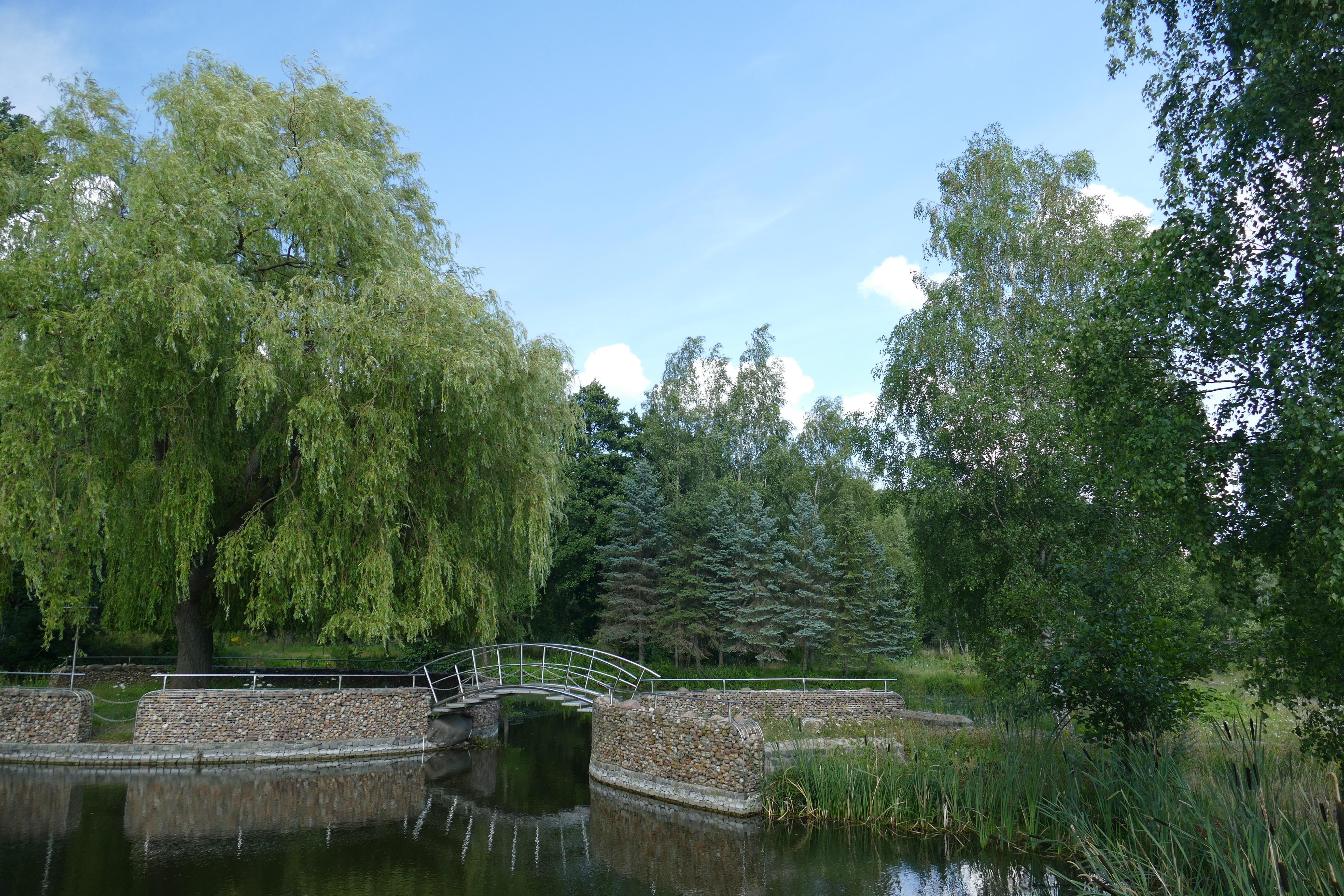 images gratuites paysage arbre ciel pont rivire canal web vert parc bleu voie navigable des arbres arbuste les forts zone humide - Arbre Ciel