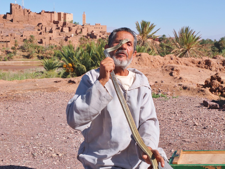 paysage arbre ciel vacances voyage des loisirs village sol tourisme maroc sahara oued marionnettiste de serpent - Arbre Ciel