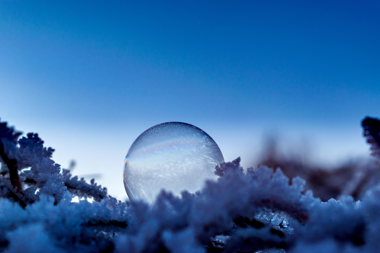 Blue Christmas Light