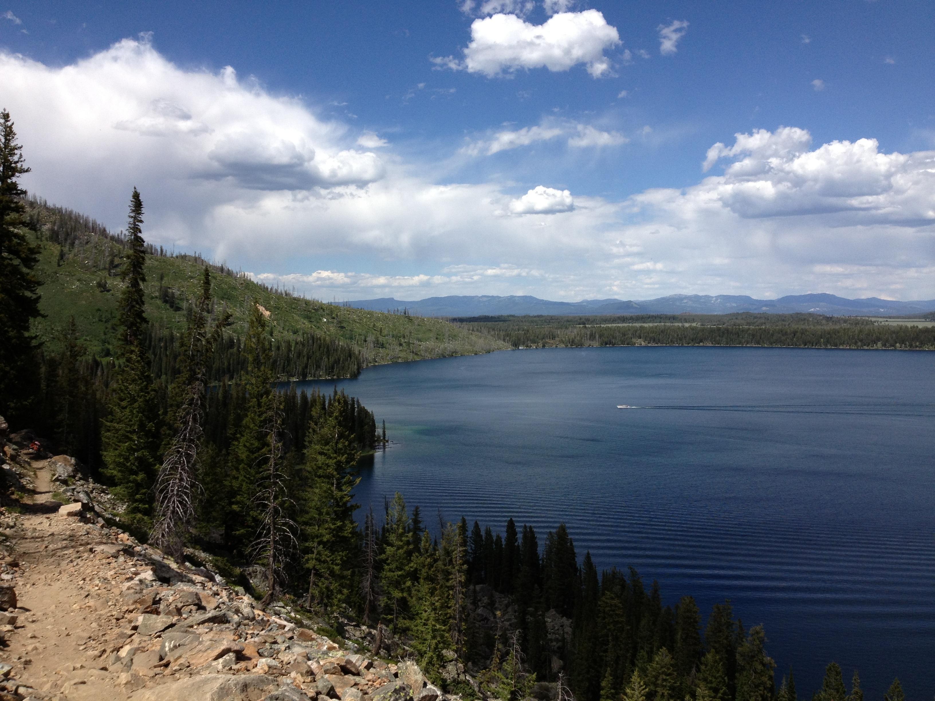 Wyoming Scenery Summer