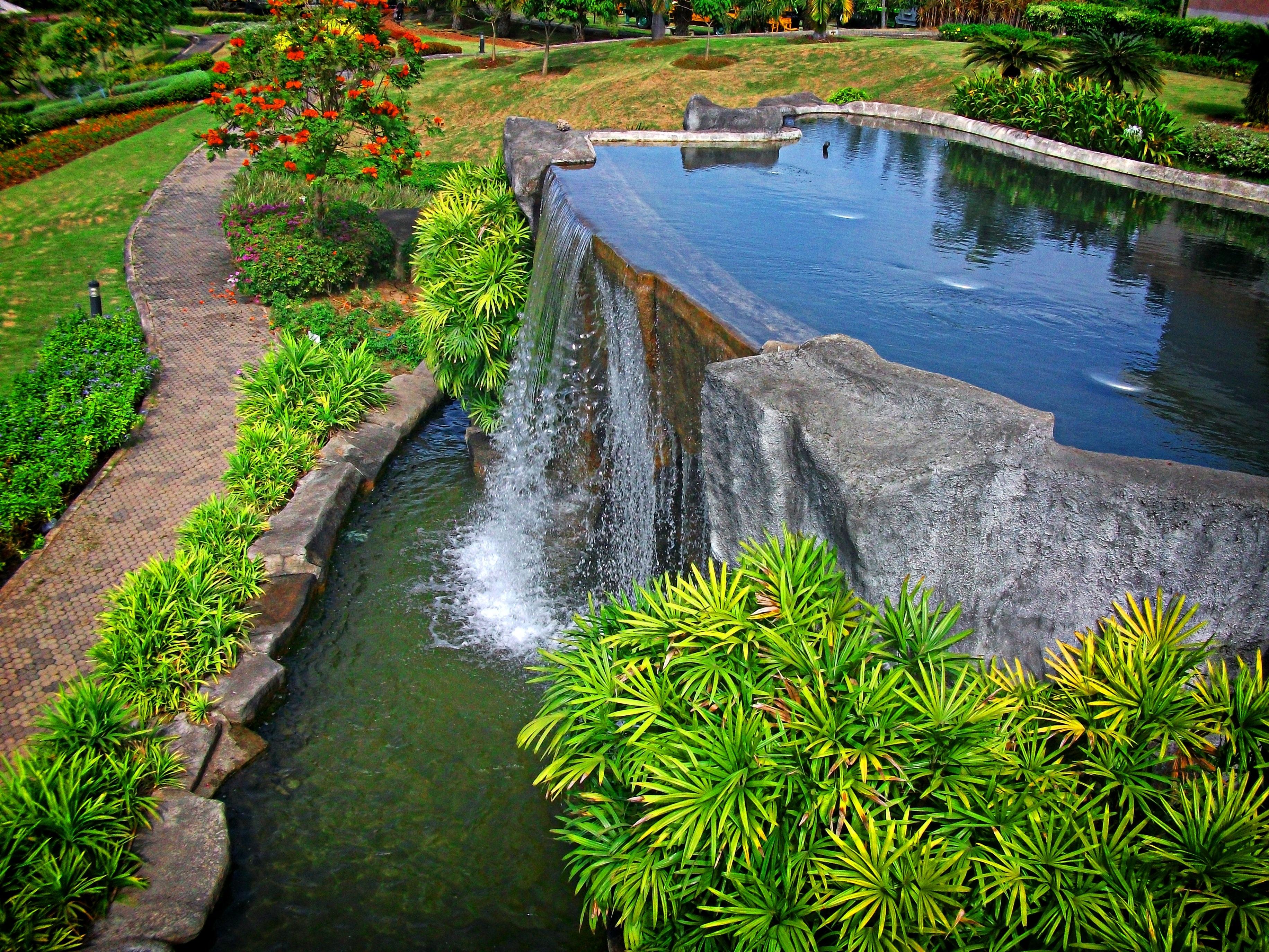 Estanque jardin good rbol jardn lago estanque ibis for Estanque reflectante