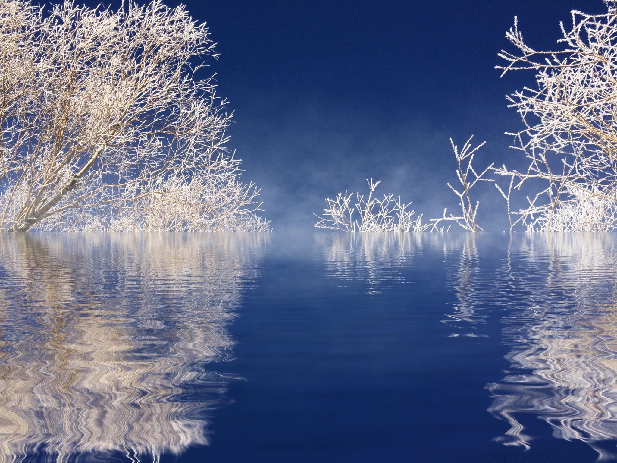 Gambar : pohon, air, alam, cabang, salju, musim dingin, awan