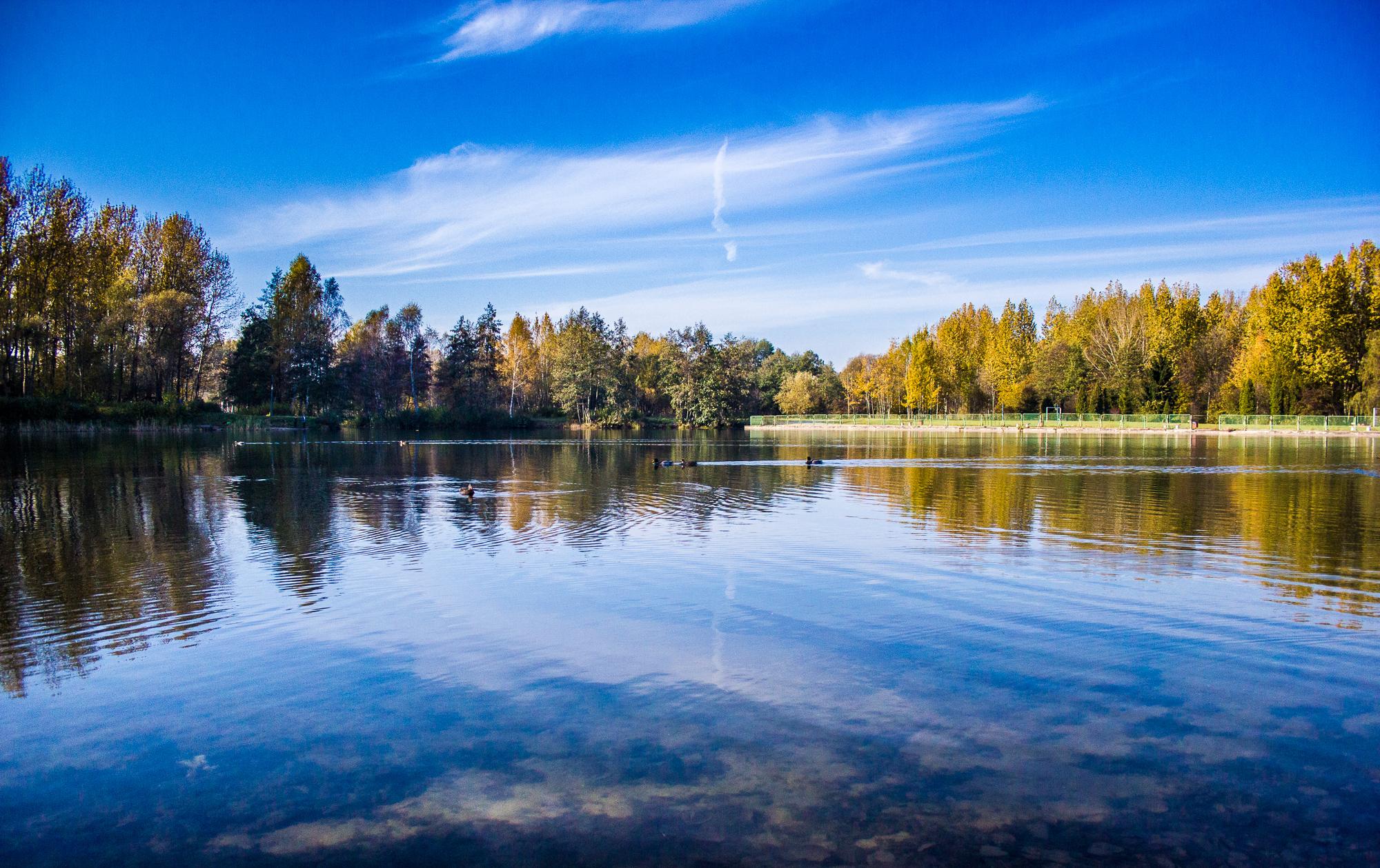 Free Images : Landscape, Tree, Nature, Cloud, Sky