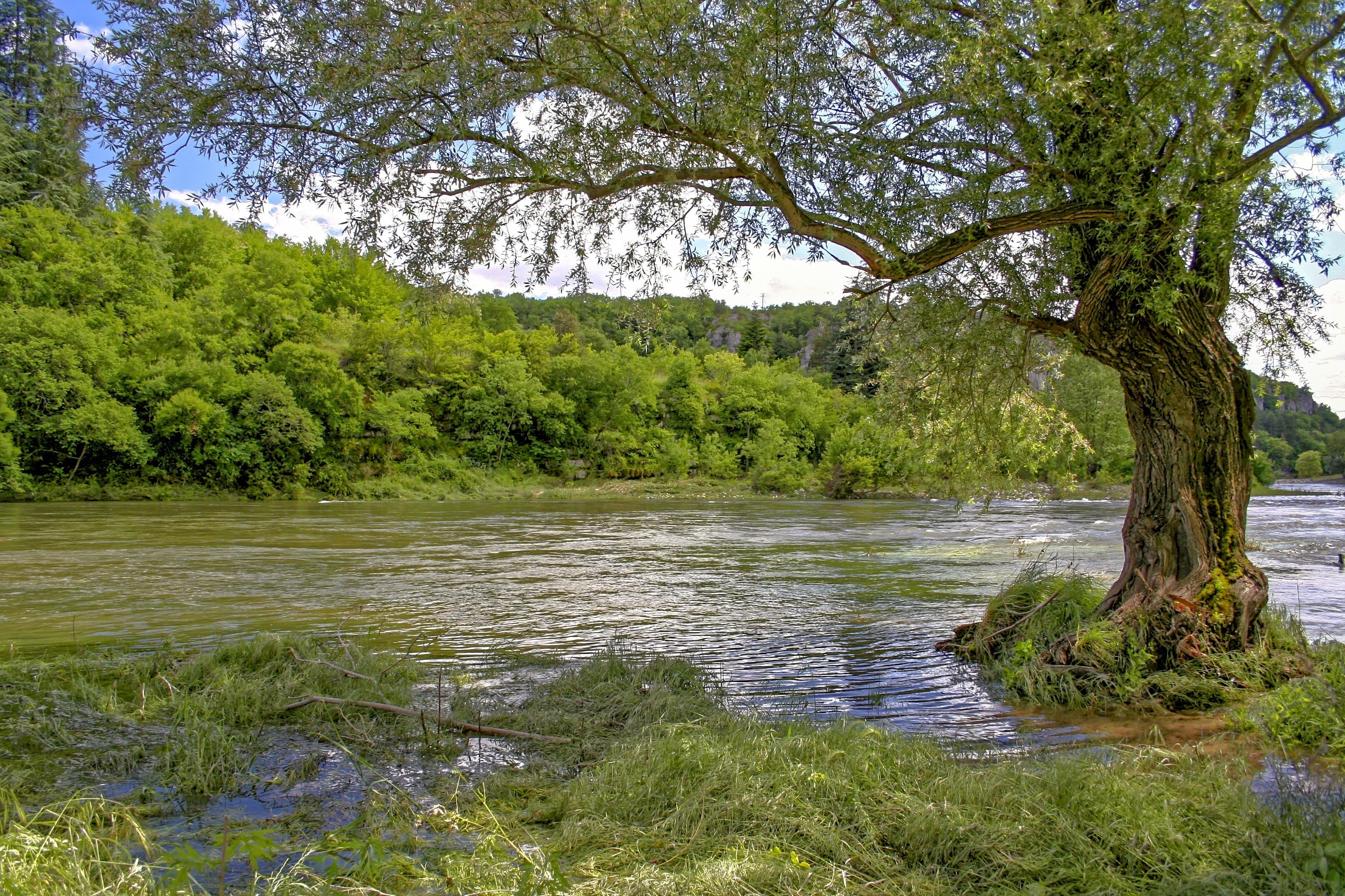 Gambar Pemandangan Alam Sungai Kecil Gurun Danau Musim Panas