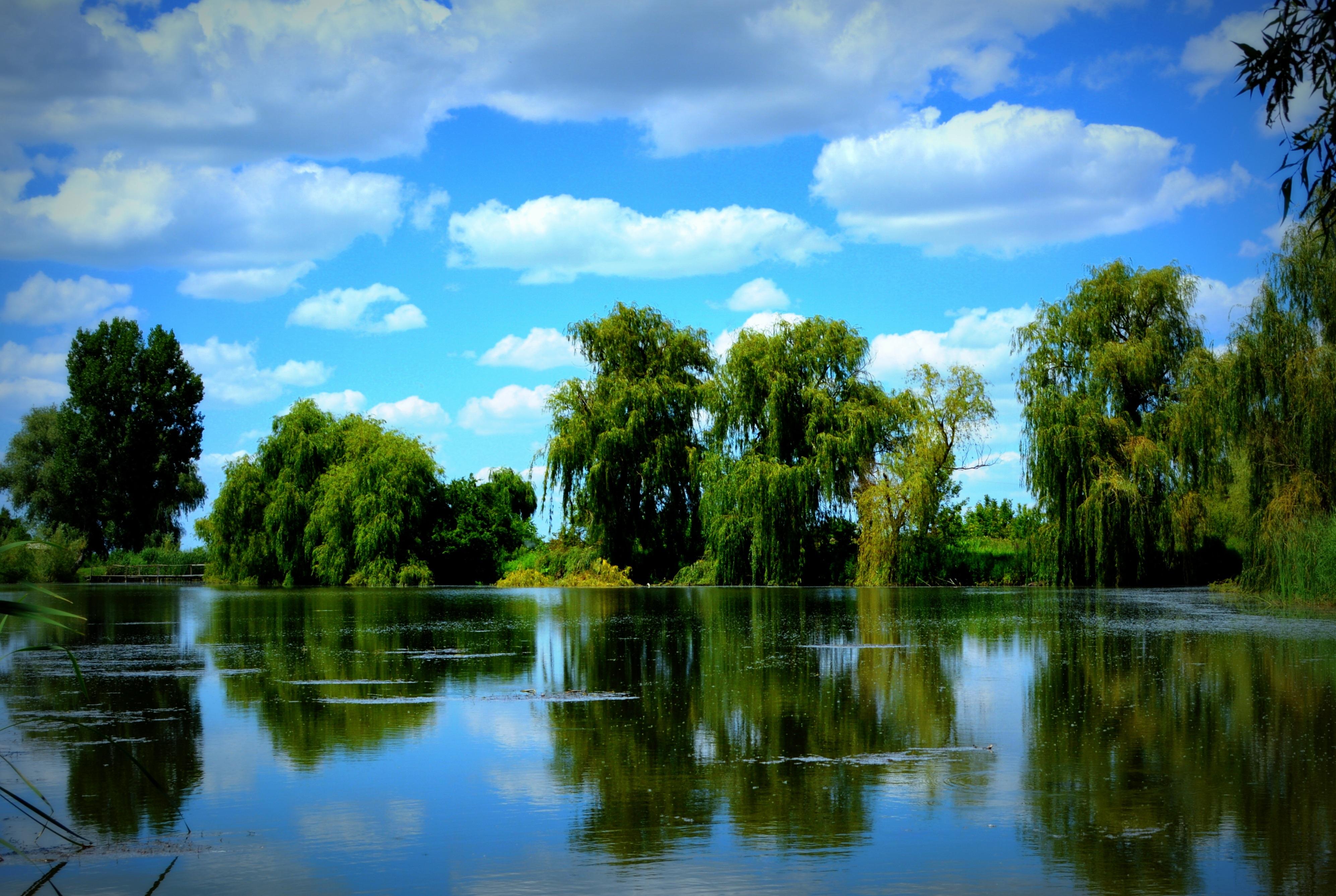 картинки на рабочий стол реки озера летом это