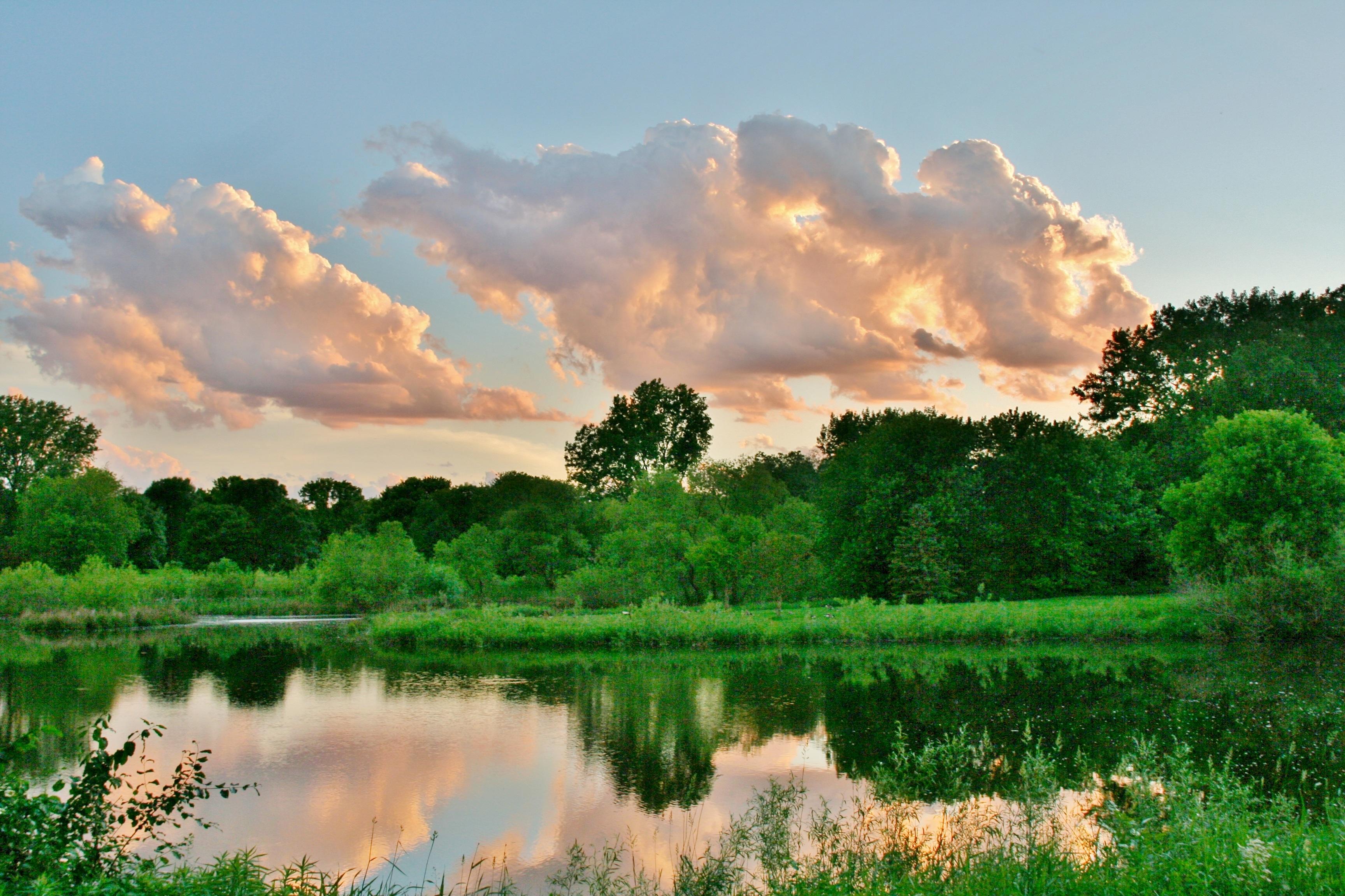 комнаты альковом картинки небо трава вода эти слухи