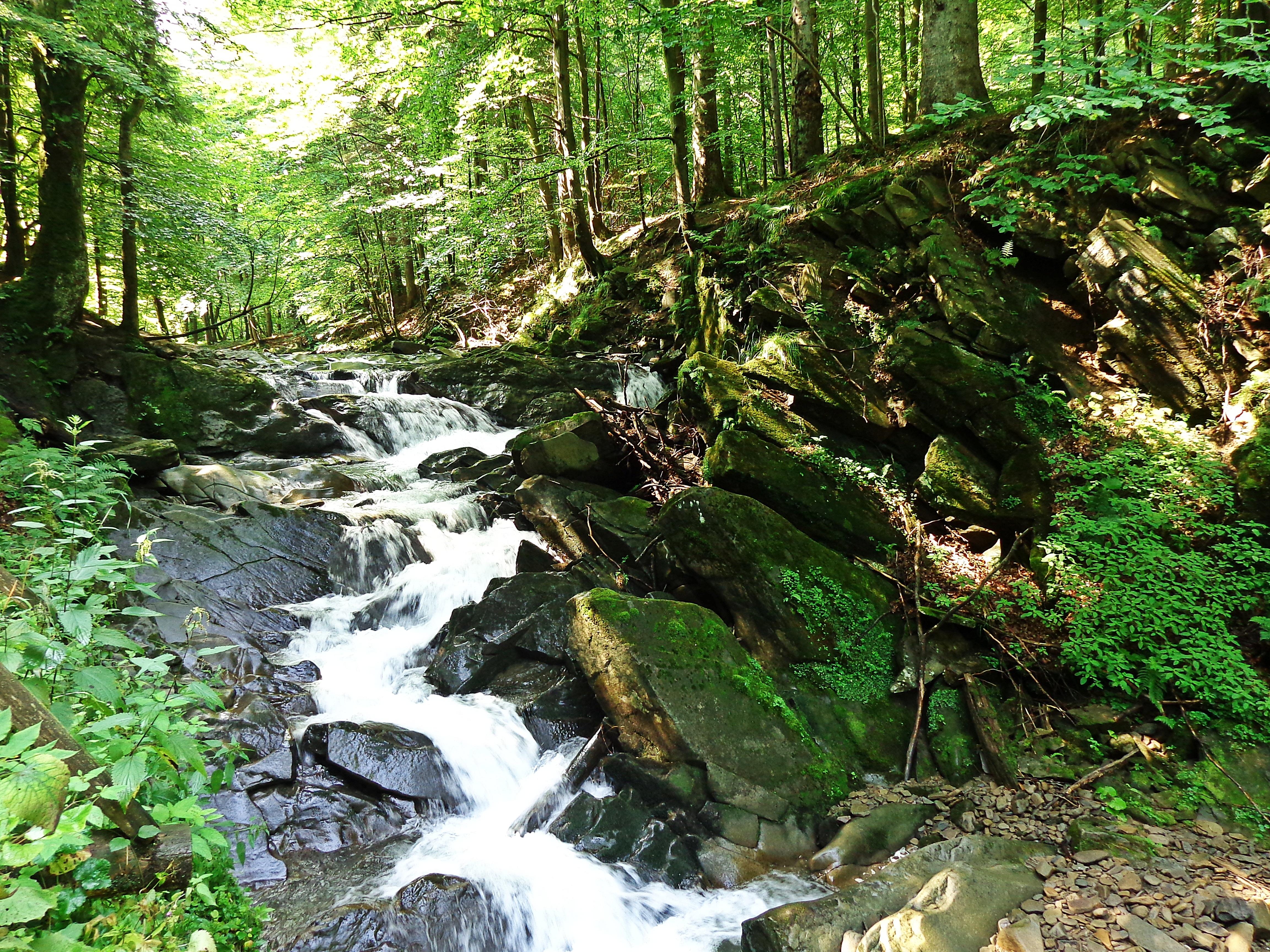 Gratis afbeeldingen landschap boom water natuur bos gras rots waterval kreek - Zomer keuken steen ...