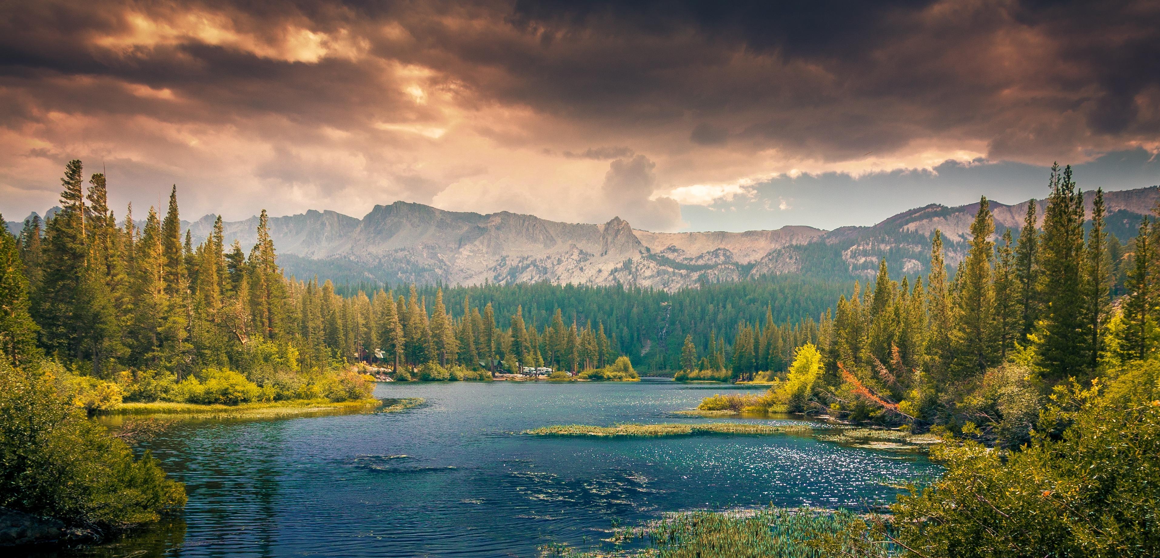 Обои rock, mountain, tree, grass, sky. Животные foto 17
