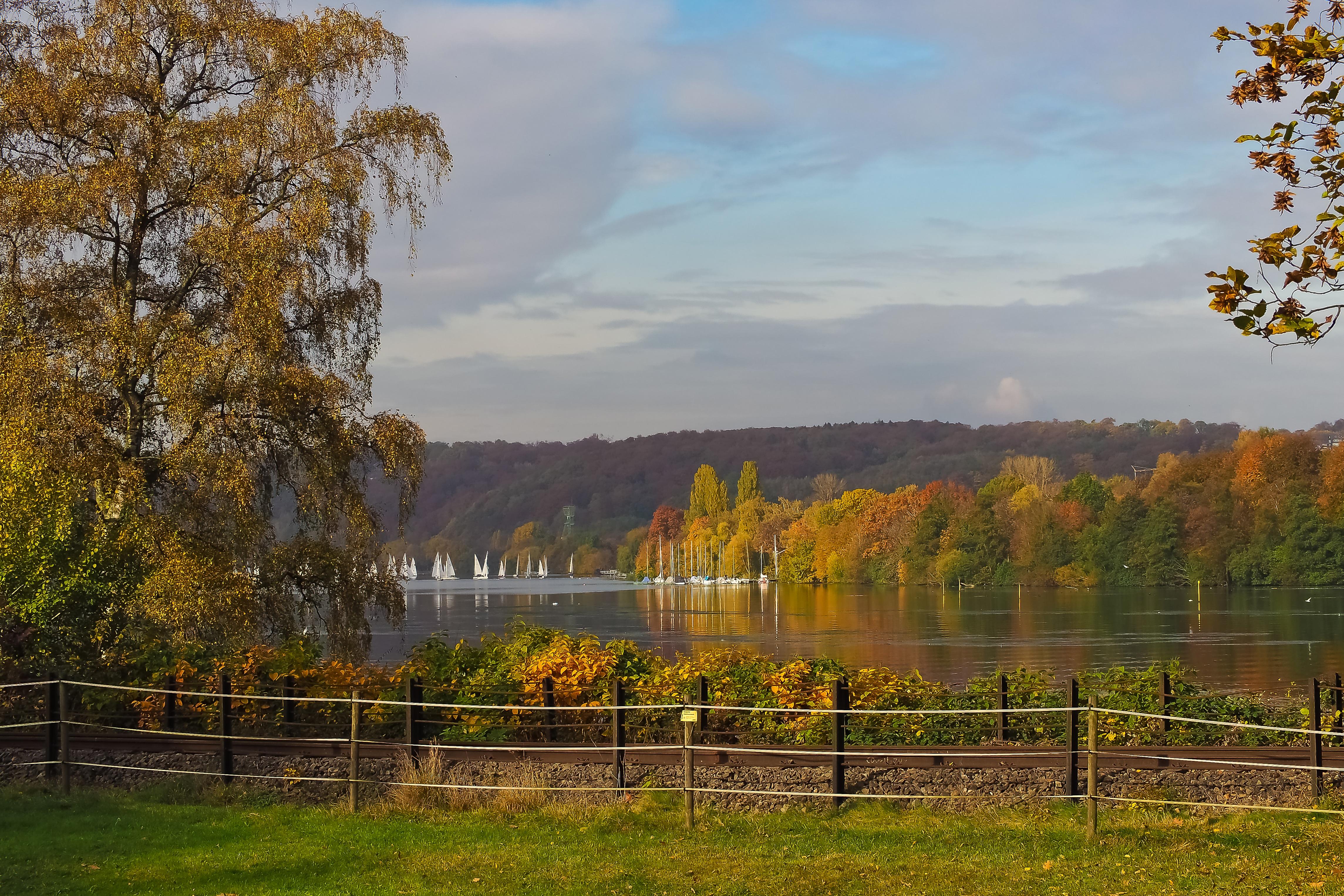 Kostenlose foto : Landschaft, Baum, Wasser, Natur, Wald, Gras ...