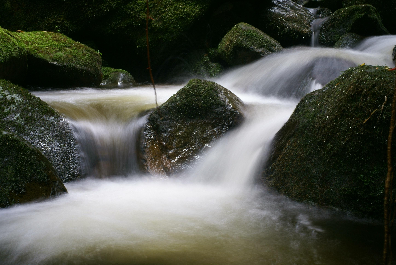 Gambar Pemandangan Pohon Alam Batu Air Terjun Sungai Kecil