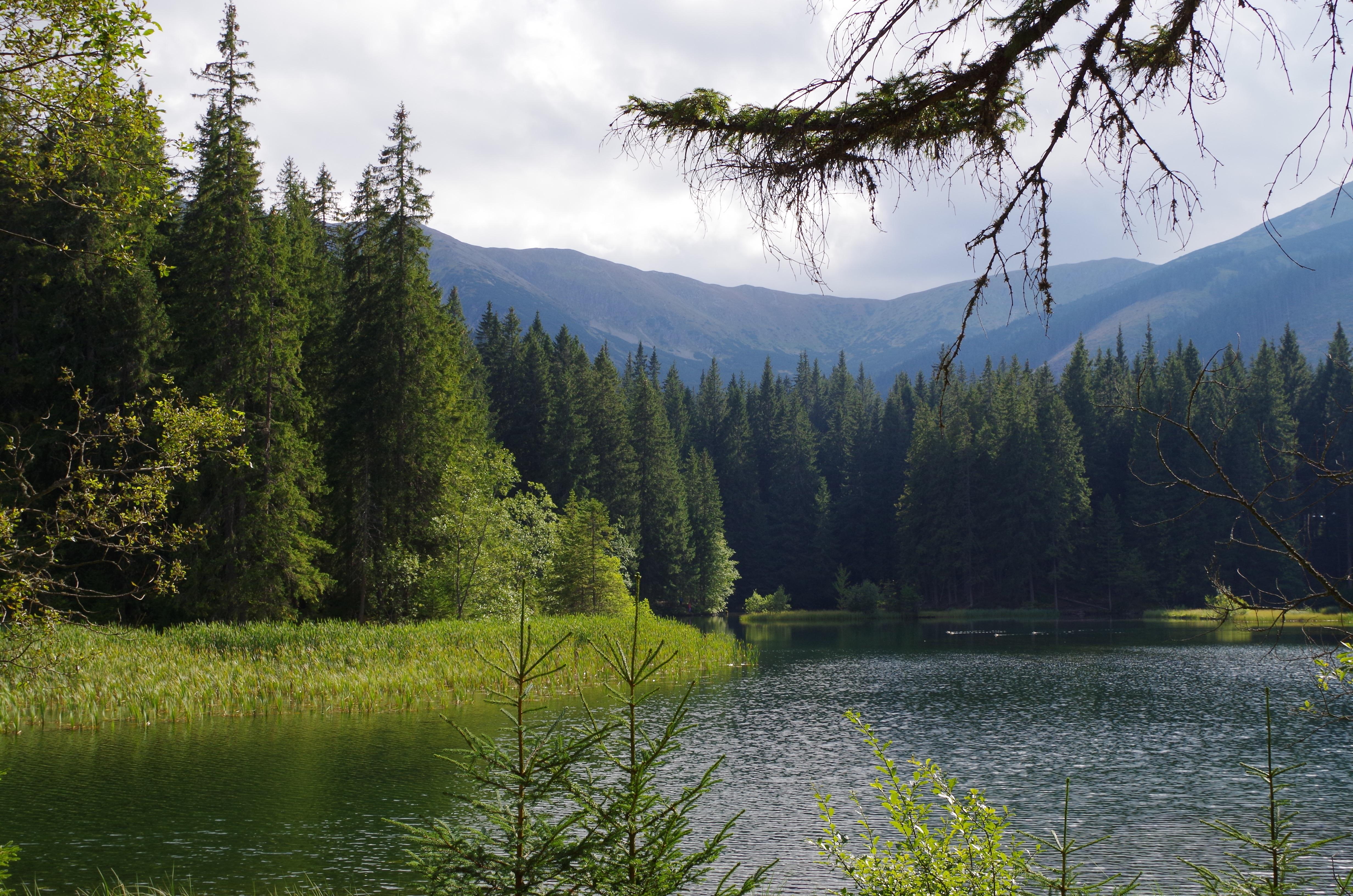 description mountain river natural - photo #13