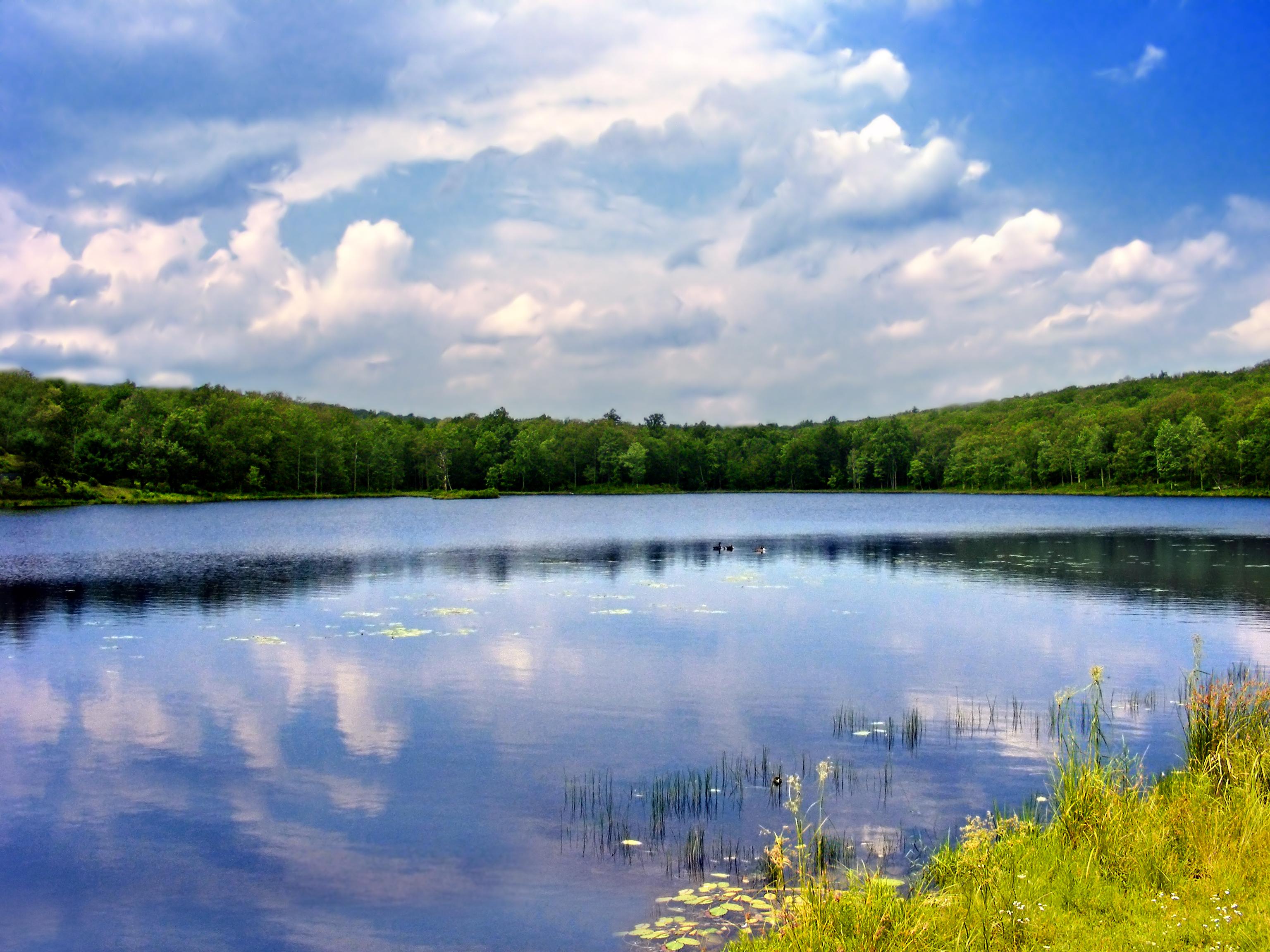 Картинки водоемов рек и озер