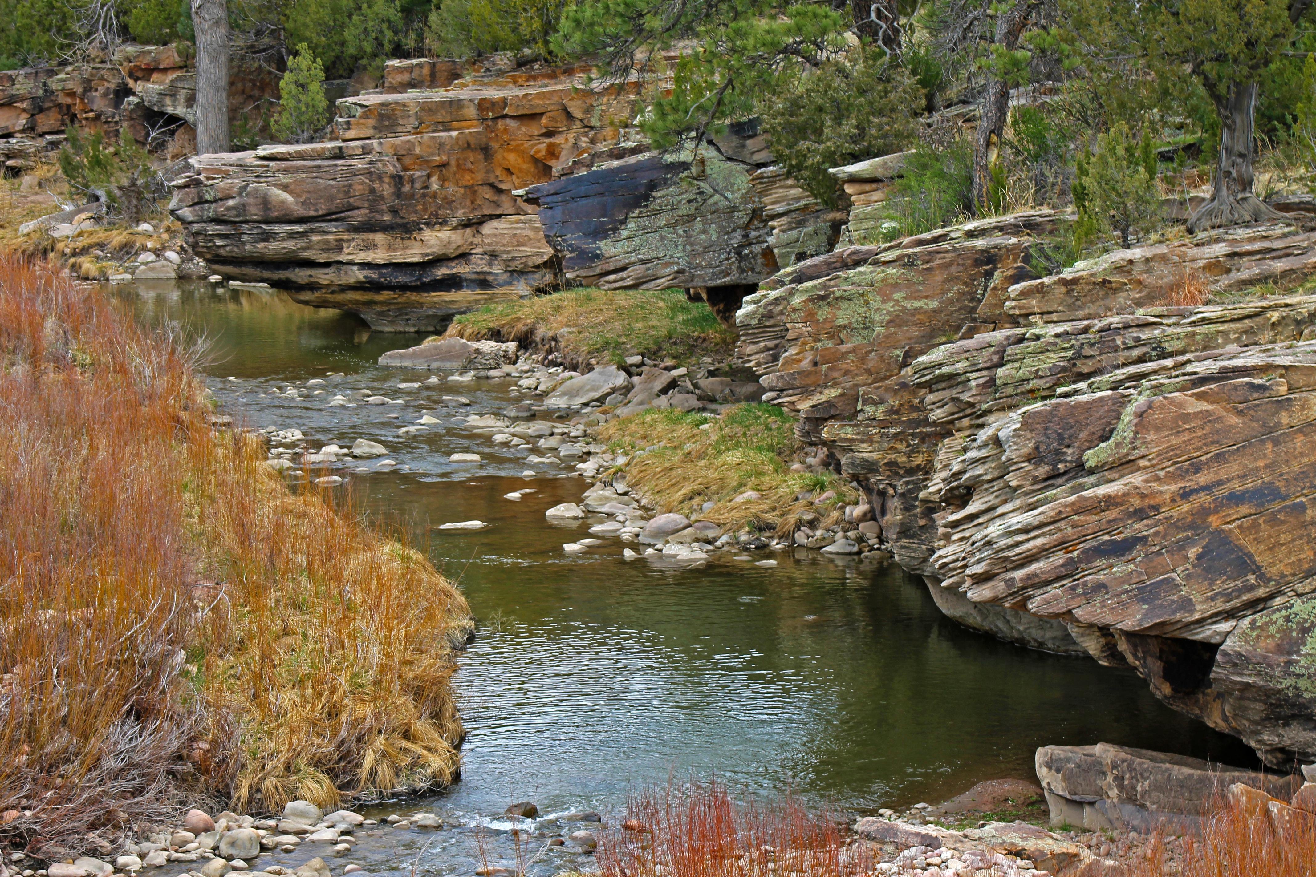 Free Images Landscape Tree Outdoor Rock Creek