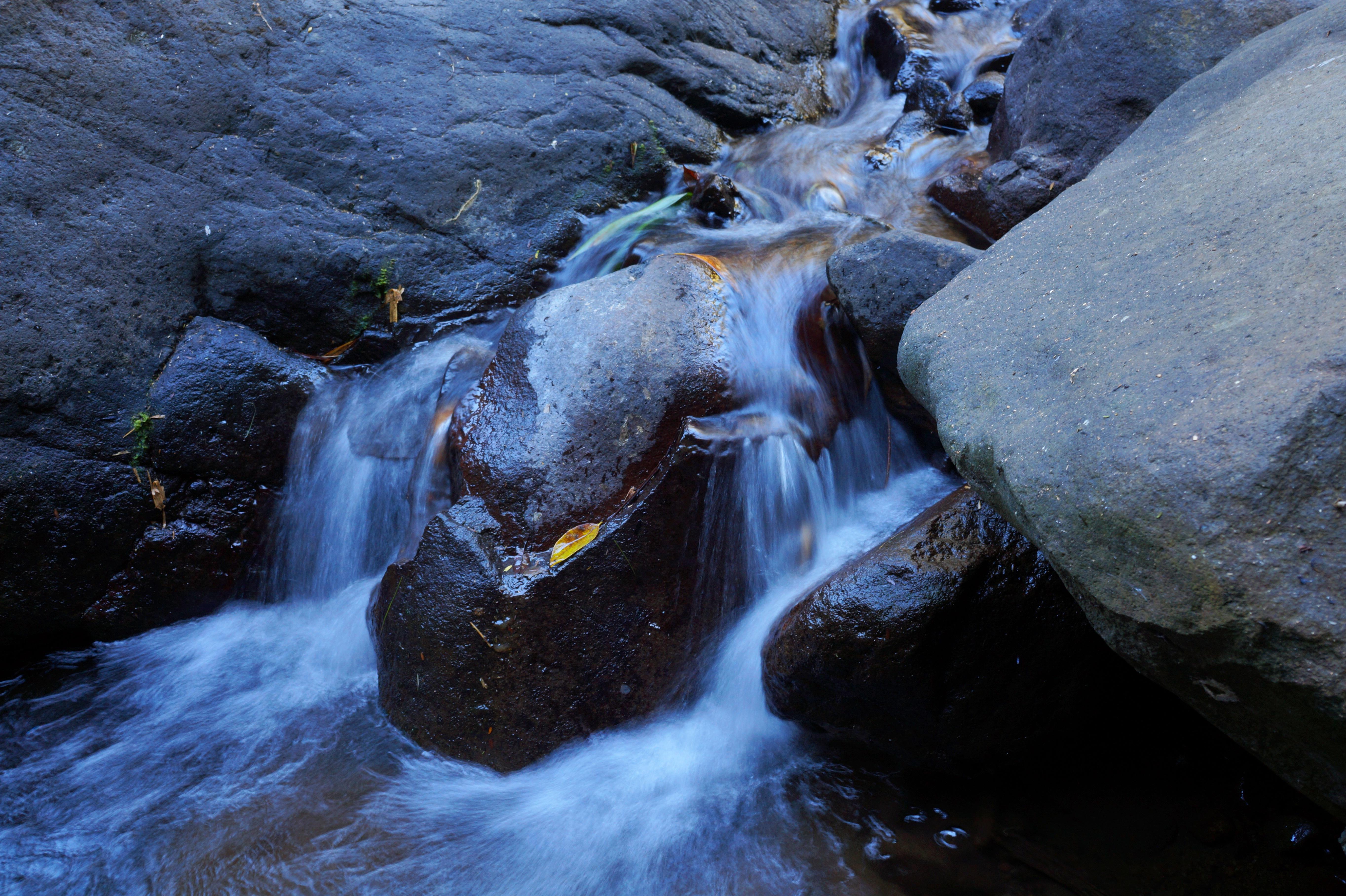 Fotos Gratis 225 Rbol Naturaleza Rock Cascada Arroyo