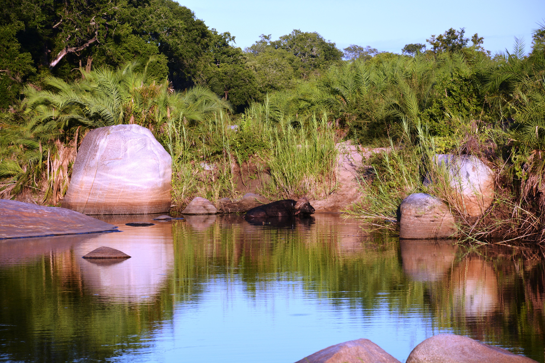 картинки озера в африке