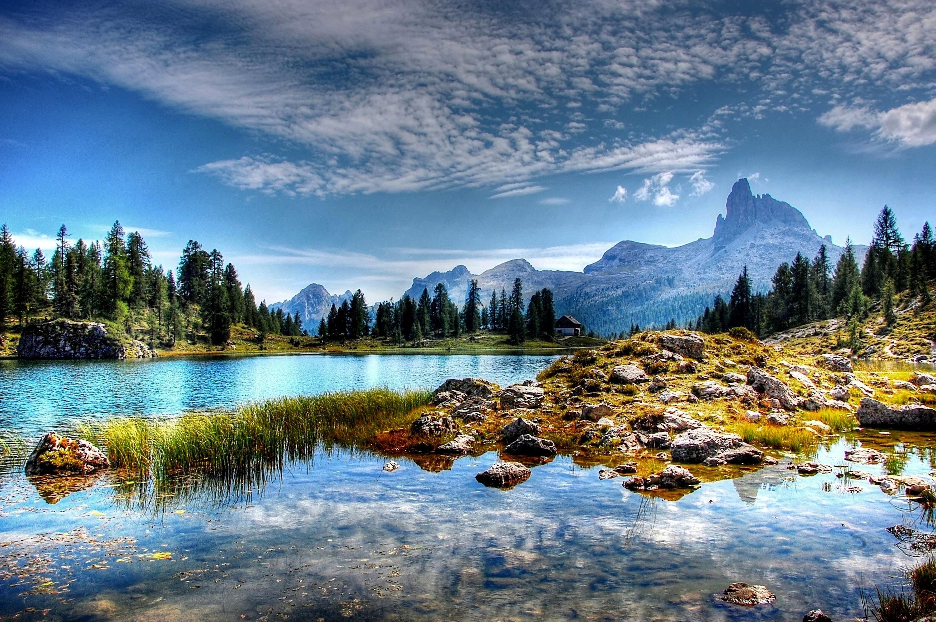 Gambar Pemandangan Pohon Batu Gurun Salju Cahaya Awan