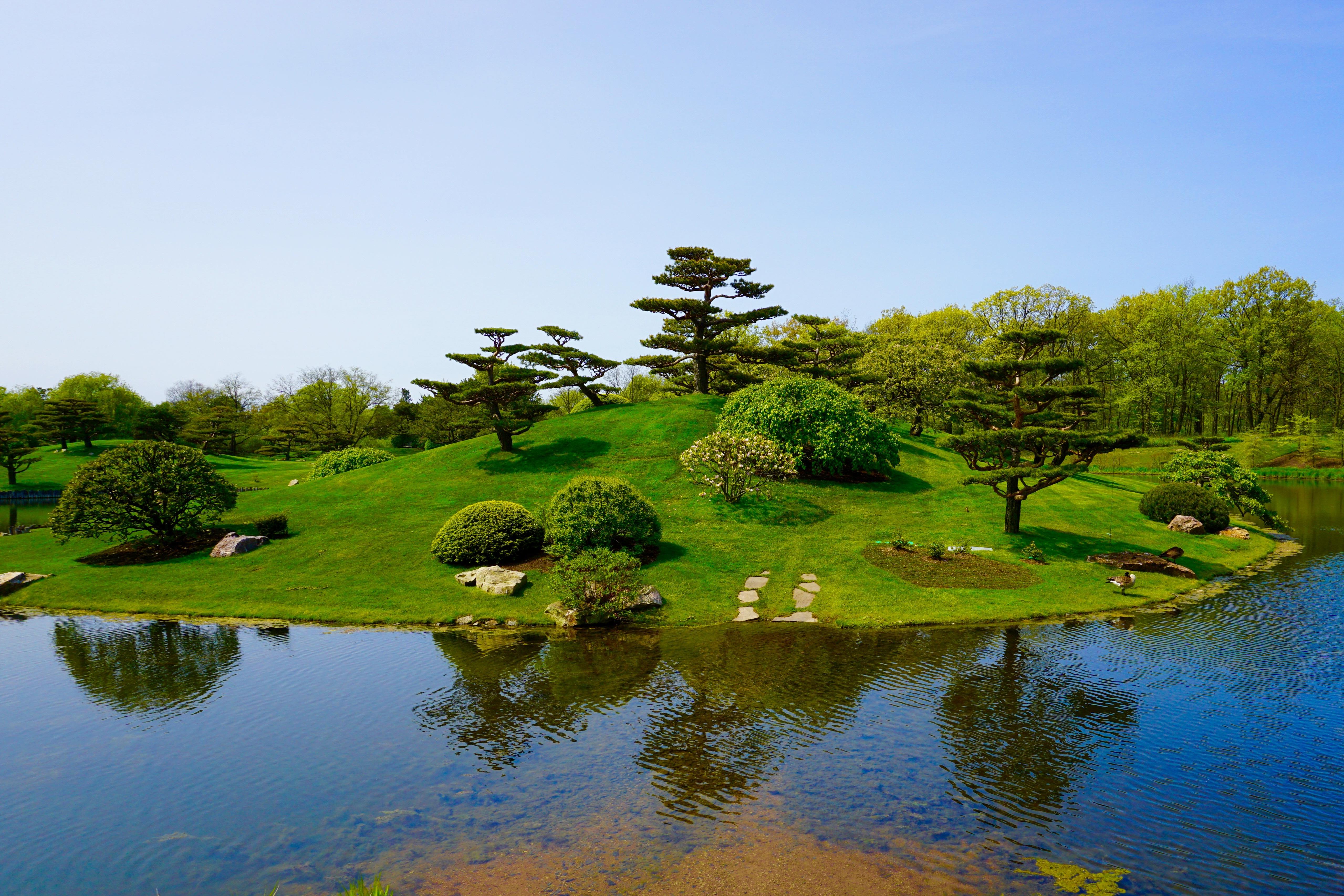 Fotos gratis paisaje rbol agua naturaleza for Arboles jardin japones