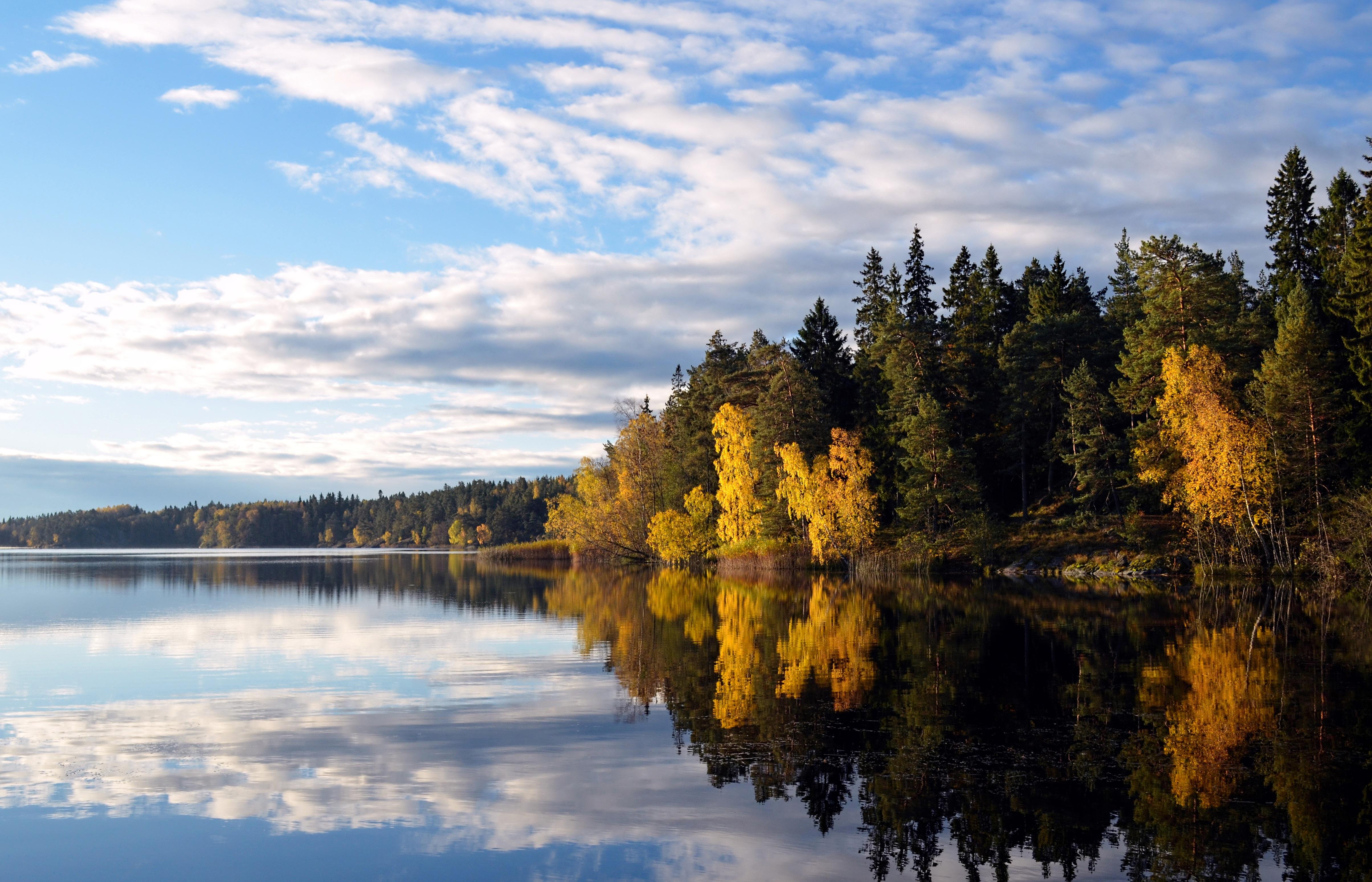 Exceptionnel Images Gratuites : paysage, arbre, eau, la nature, région sauvage  YX59
