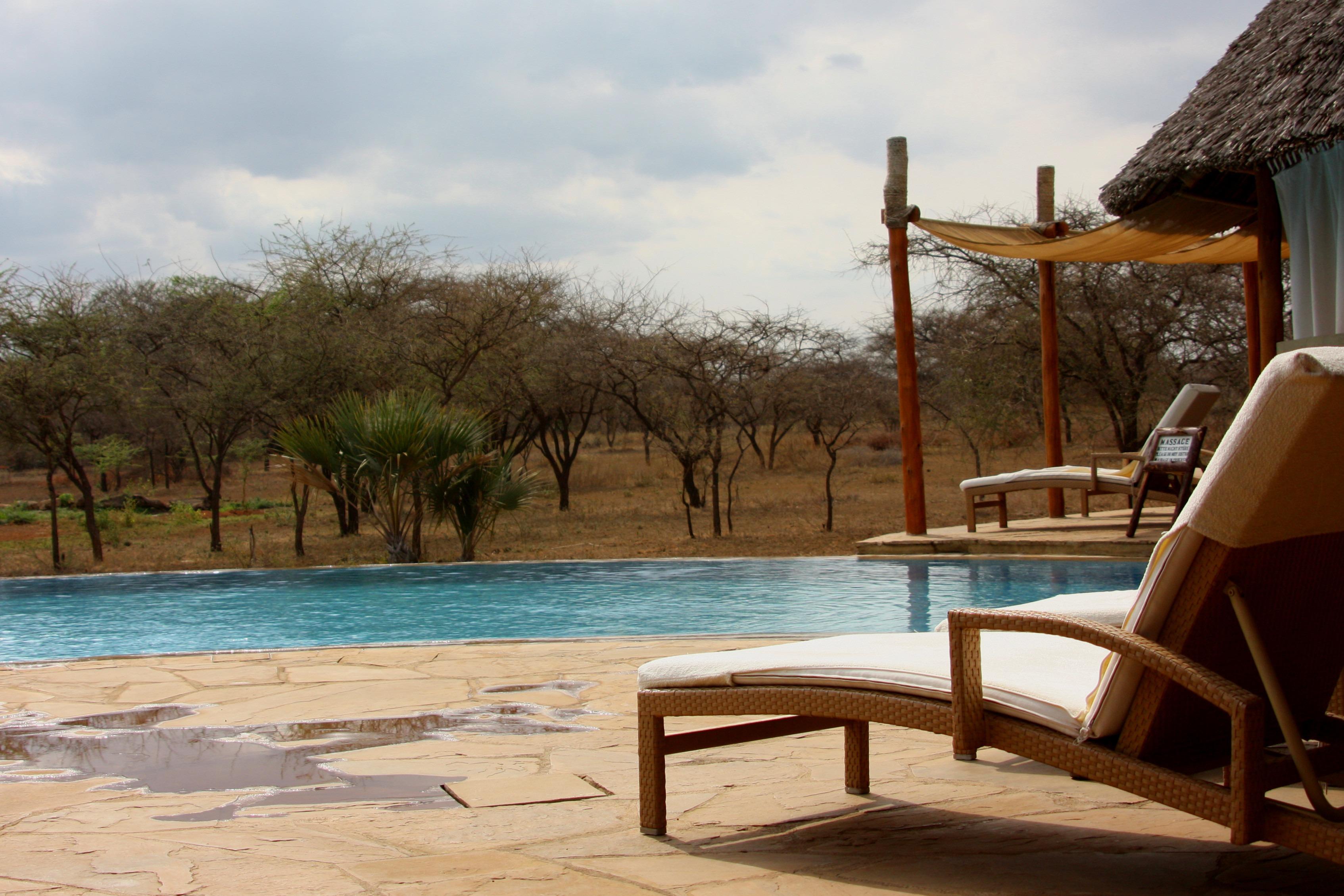Fotos gratis : paisaje, árbol, agua, vacaciones, recreación, piscina ...