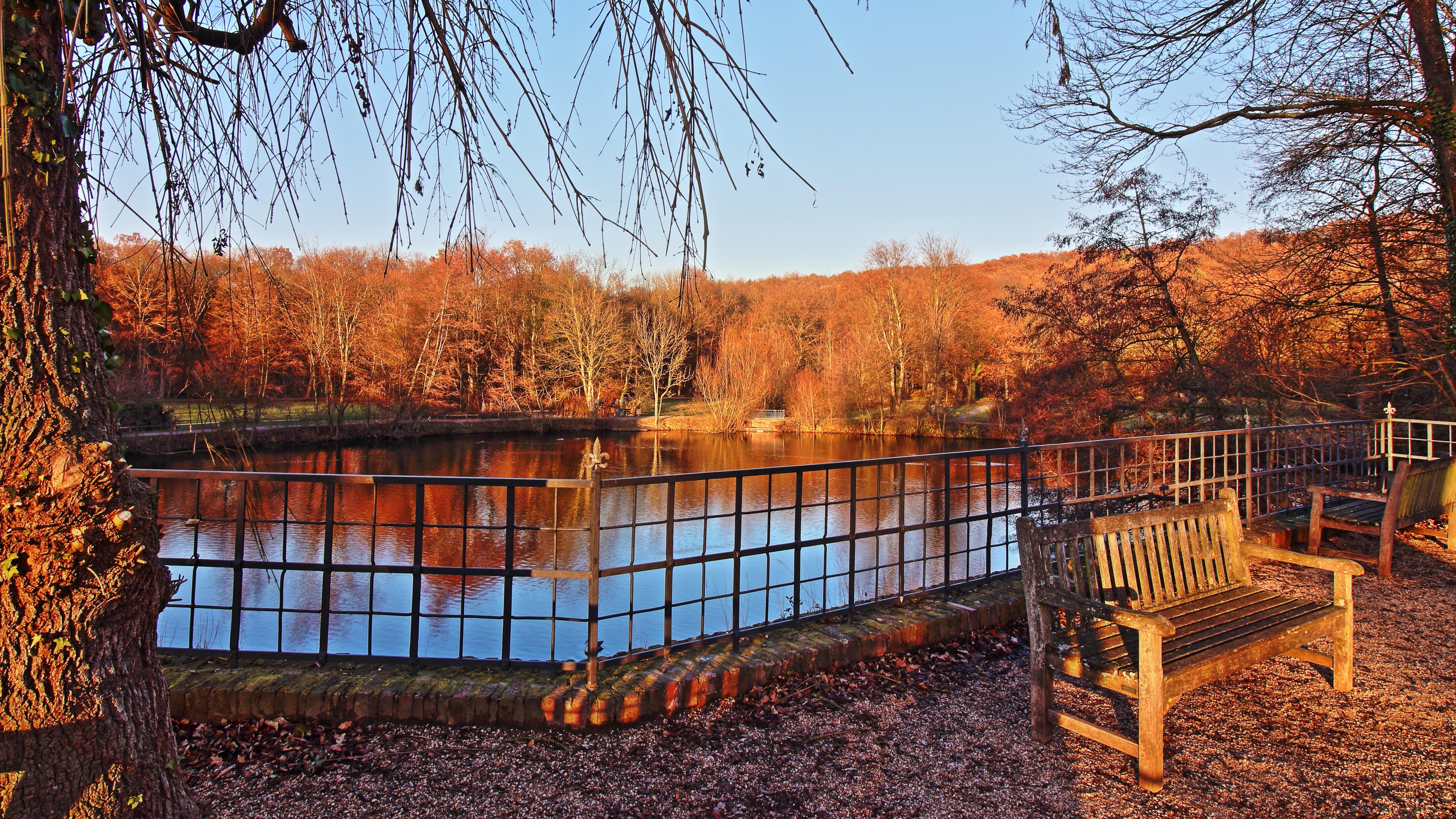 Landschaft Wasser Zaun Holz Blatt Zuhause Teich Hütte Herbst Park Hinterhof  Jahreszeit Bäume Entstehen Wald Blockhaus