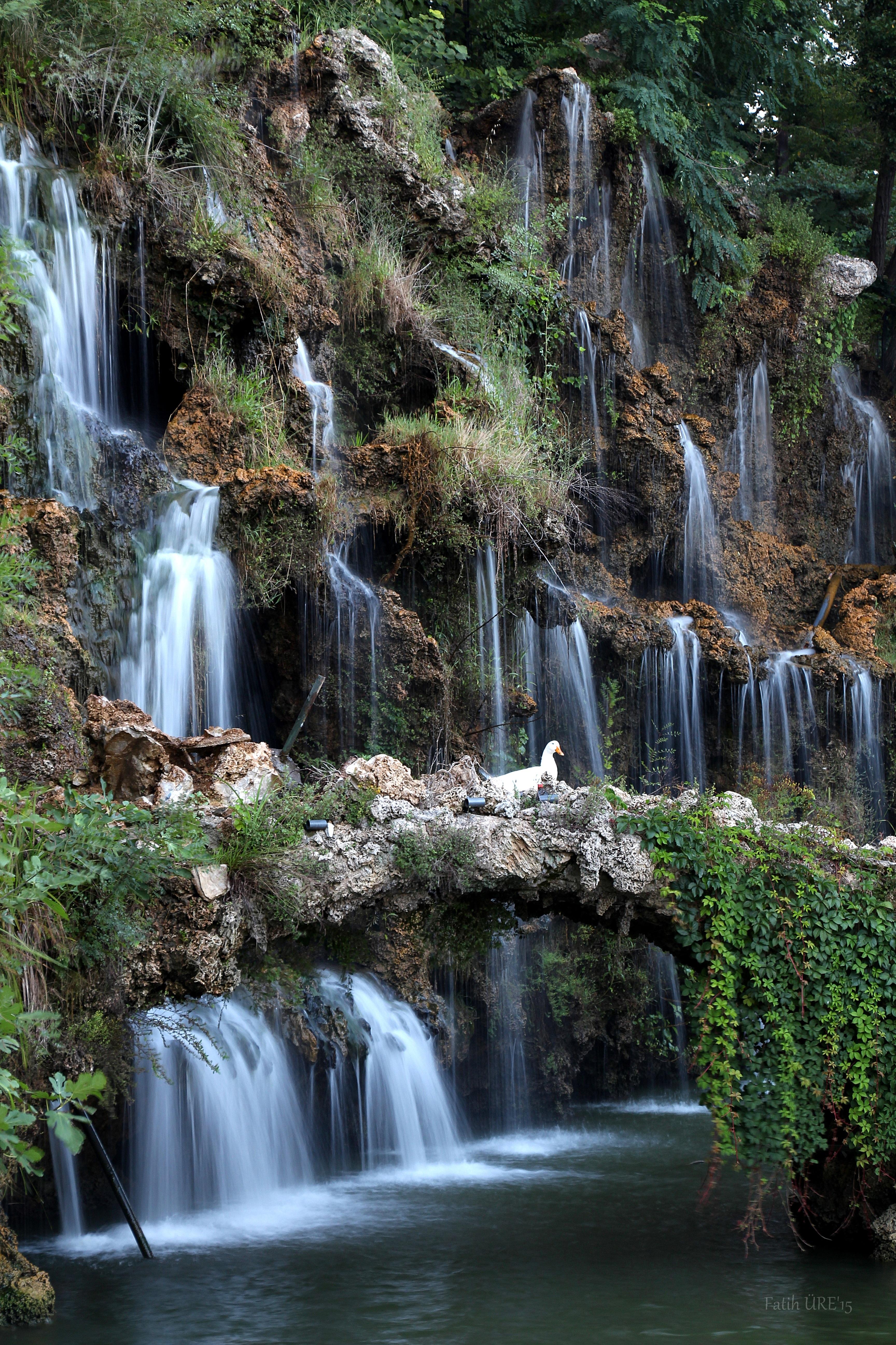 Fotos gratis paisaje bosque cascada ver selva for Fuente cascada agua