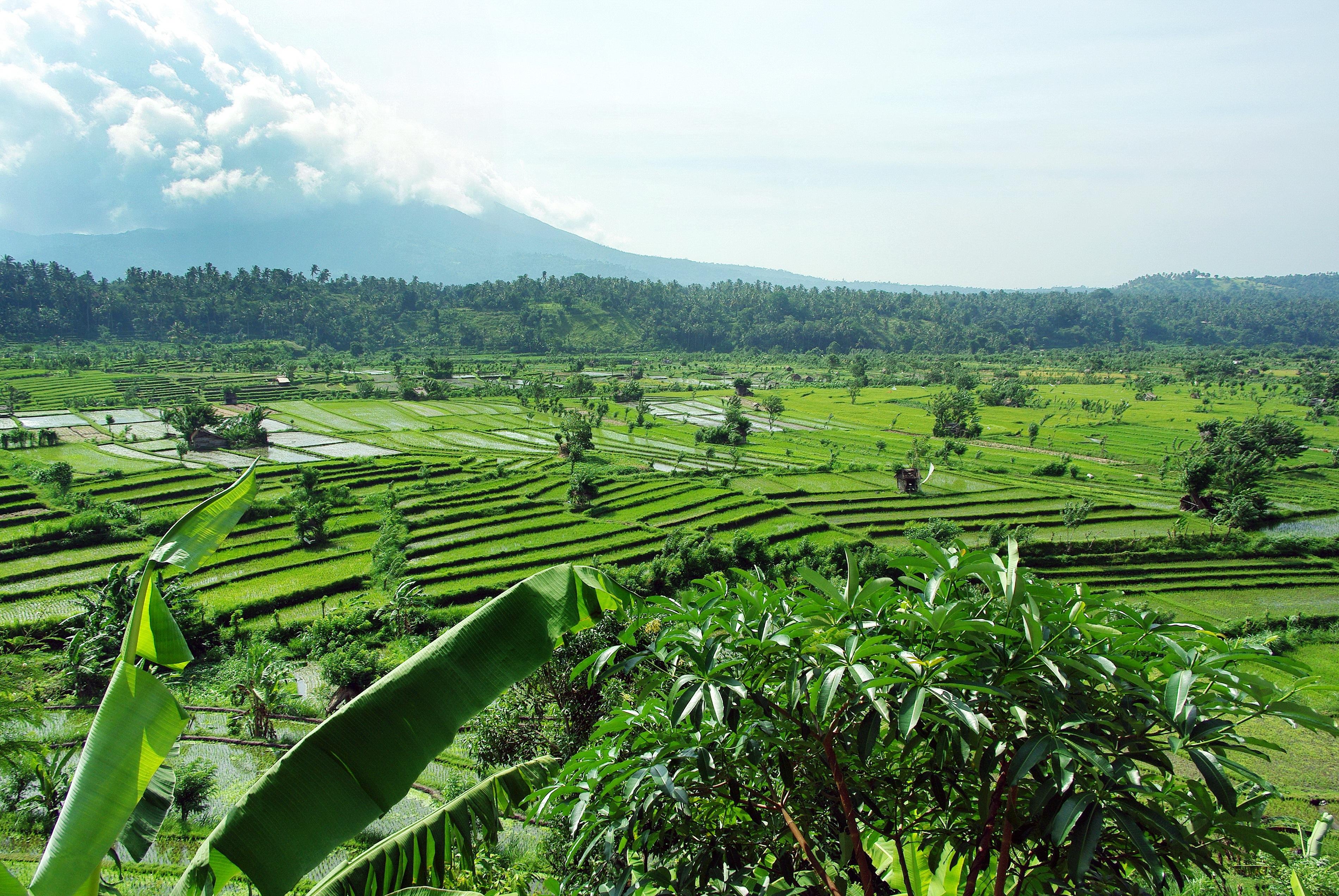 Gambar Pemandangan Air Bidang Tanah Pertanian Bukit Lembah