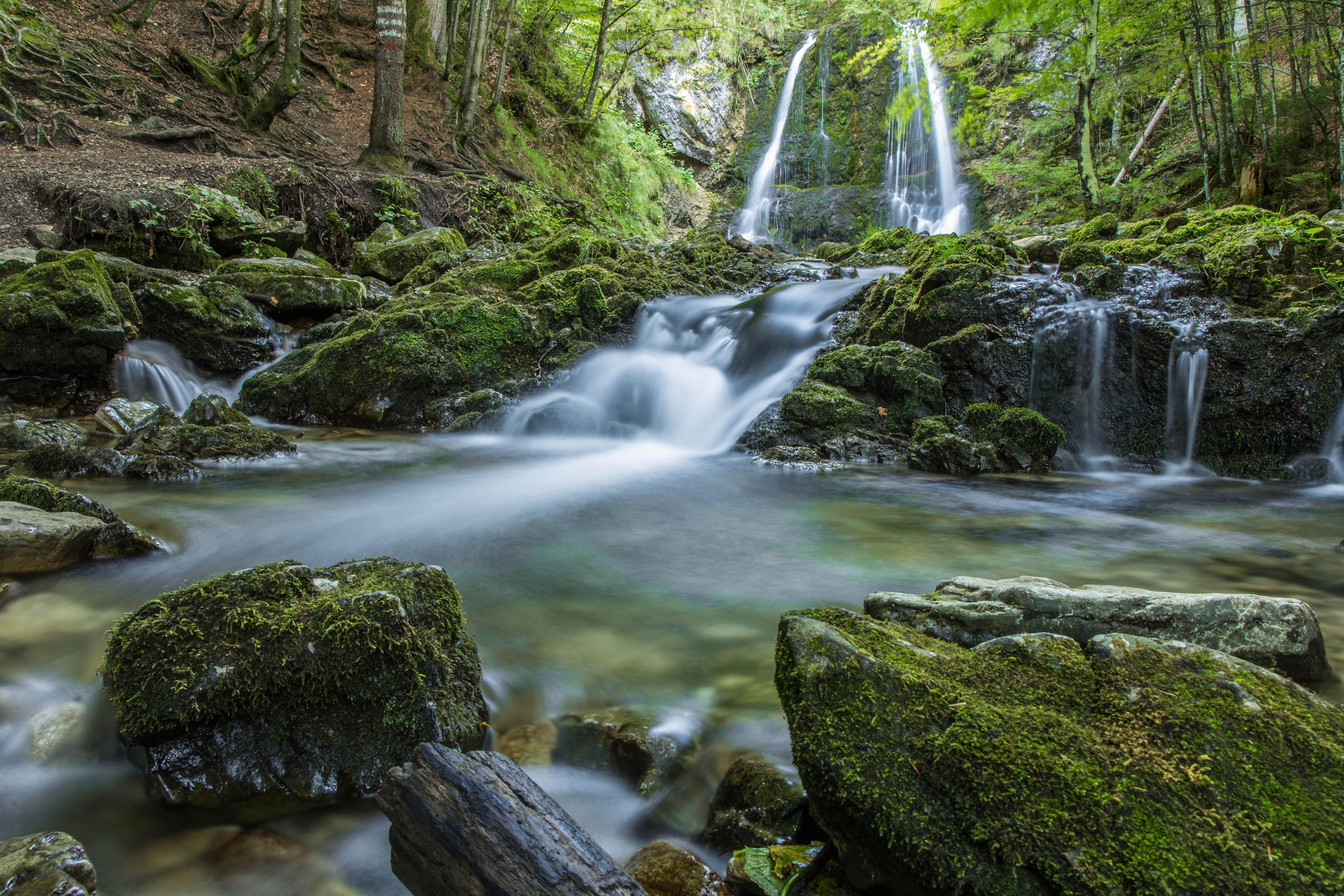 Fotos gratis paisaje naturaleza bosque rock cascada for Fuente cascada agua