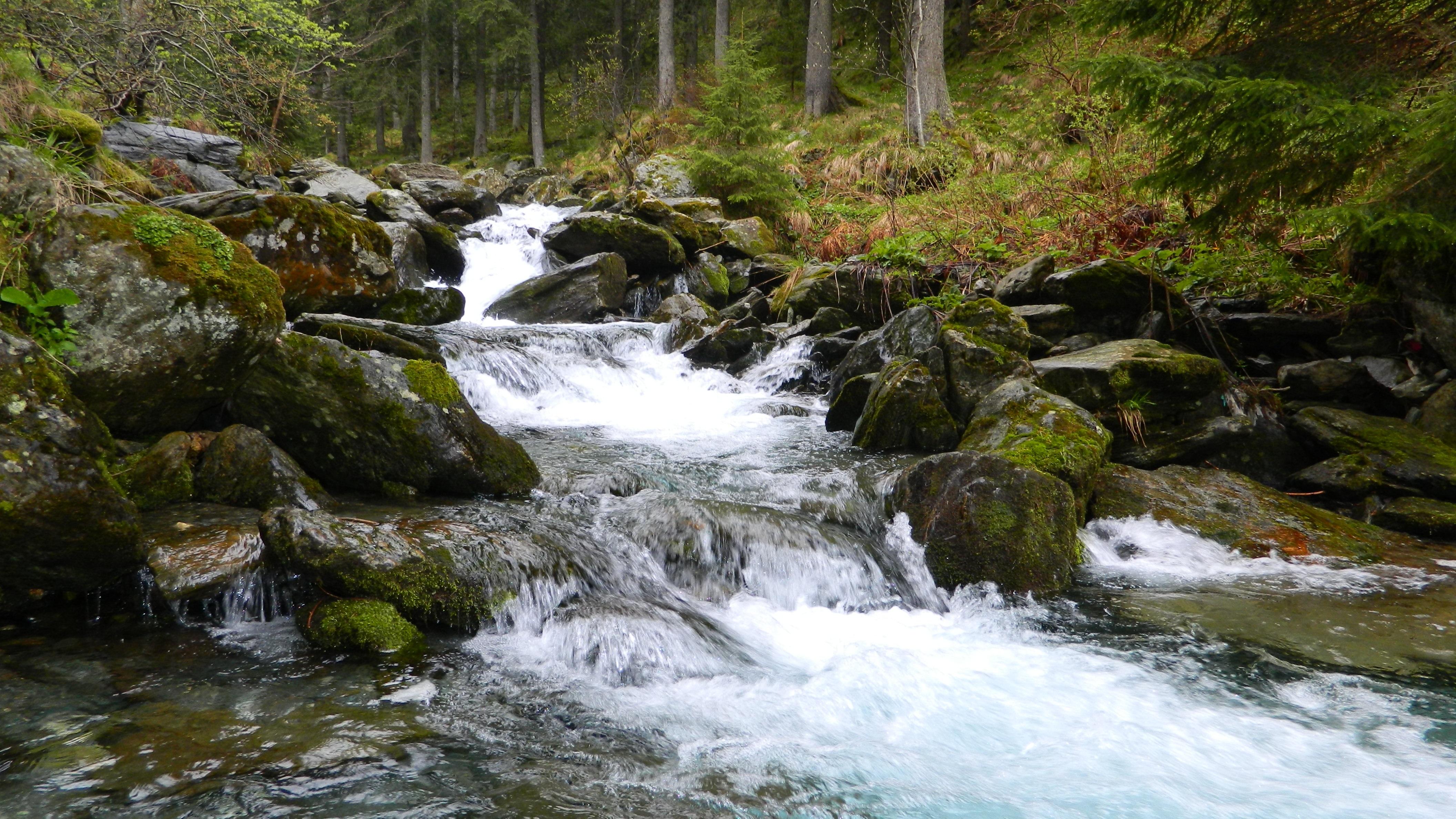 Gambar Pemandangan Alam Hutan Air Terjun Sungai Kecil Gurun