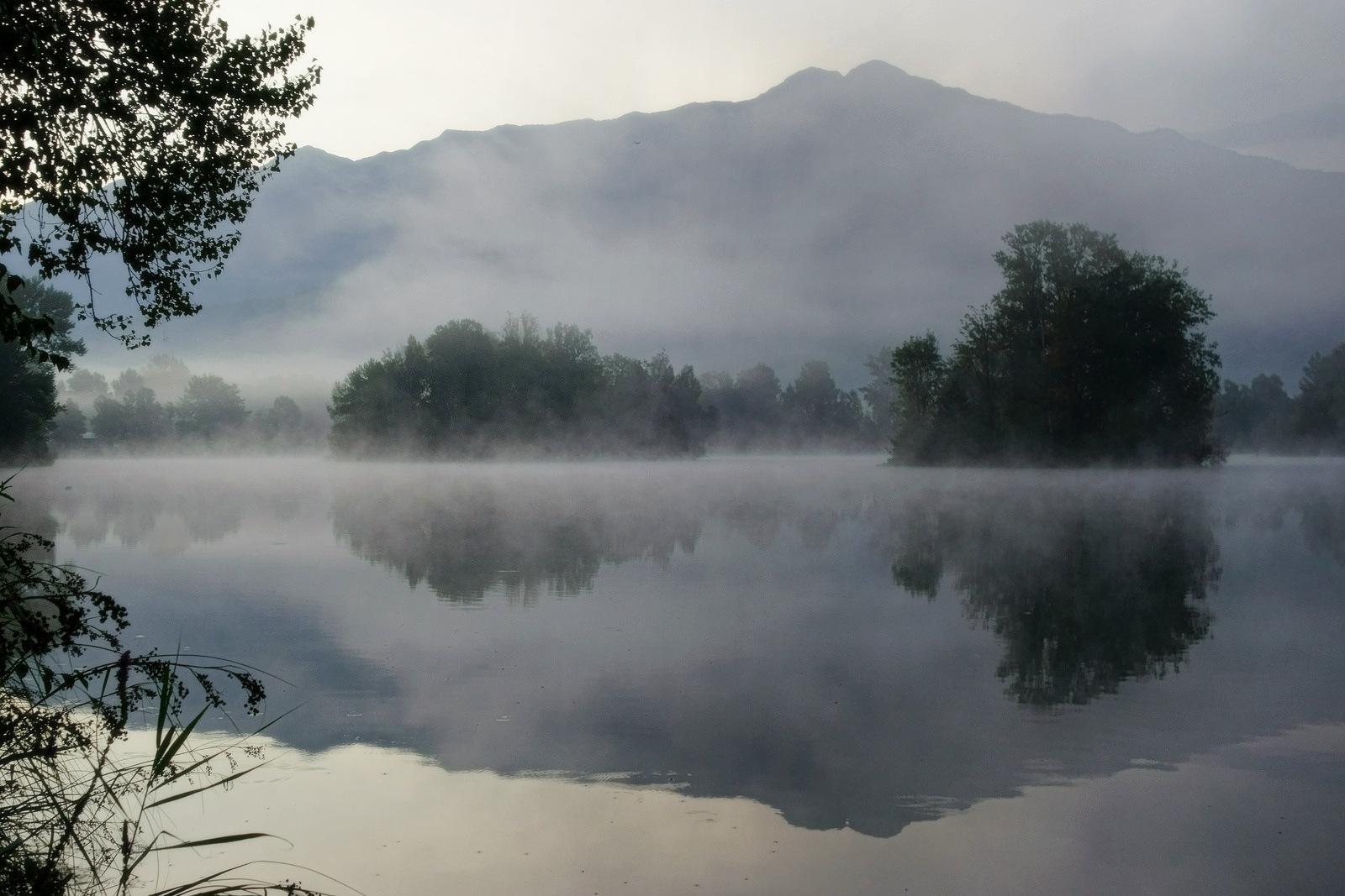 free images   landscape  nature  forest  wilderness