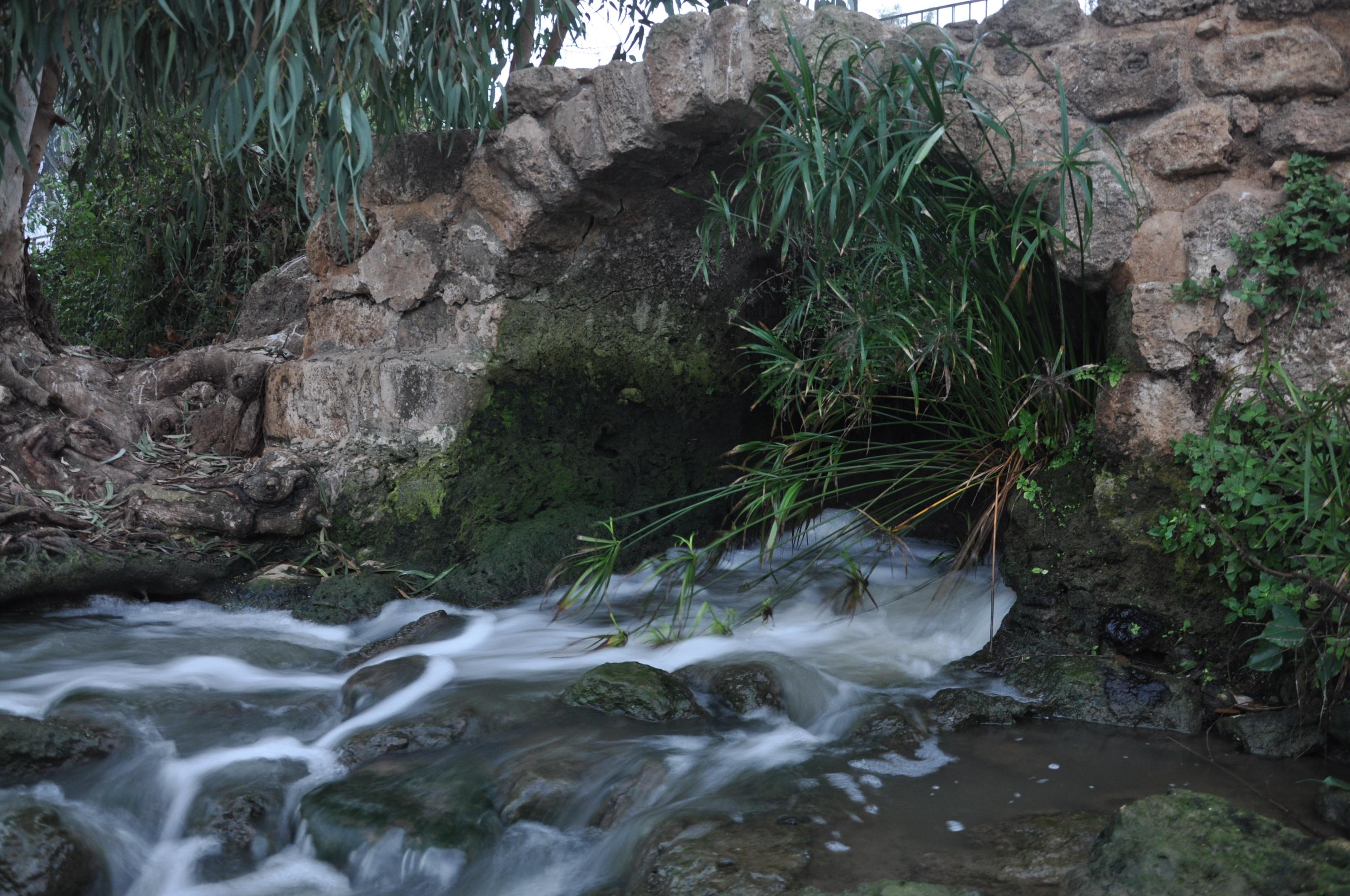 Fotos gratis paisaje naturaleza rock cascada puente for Agua verde estanque