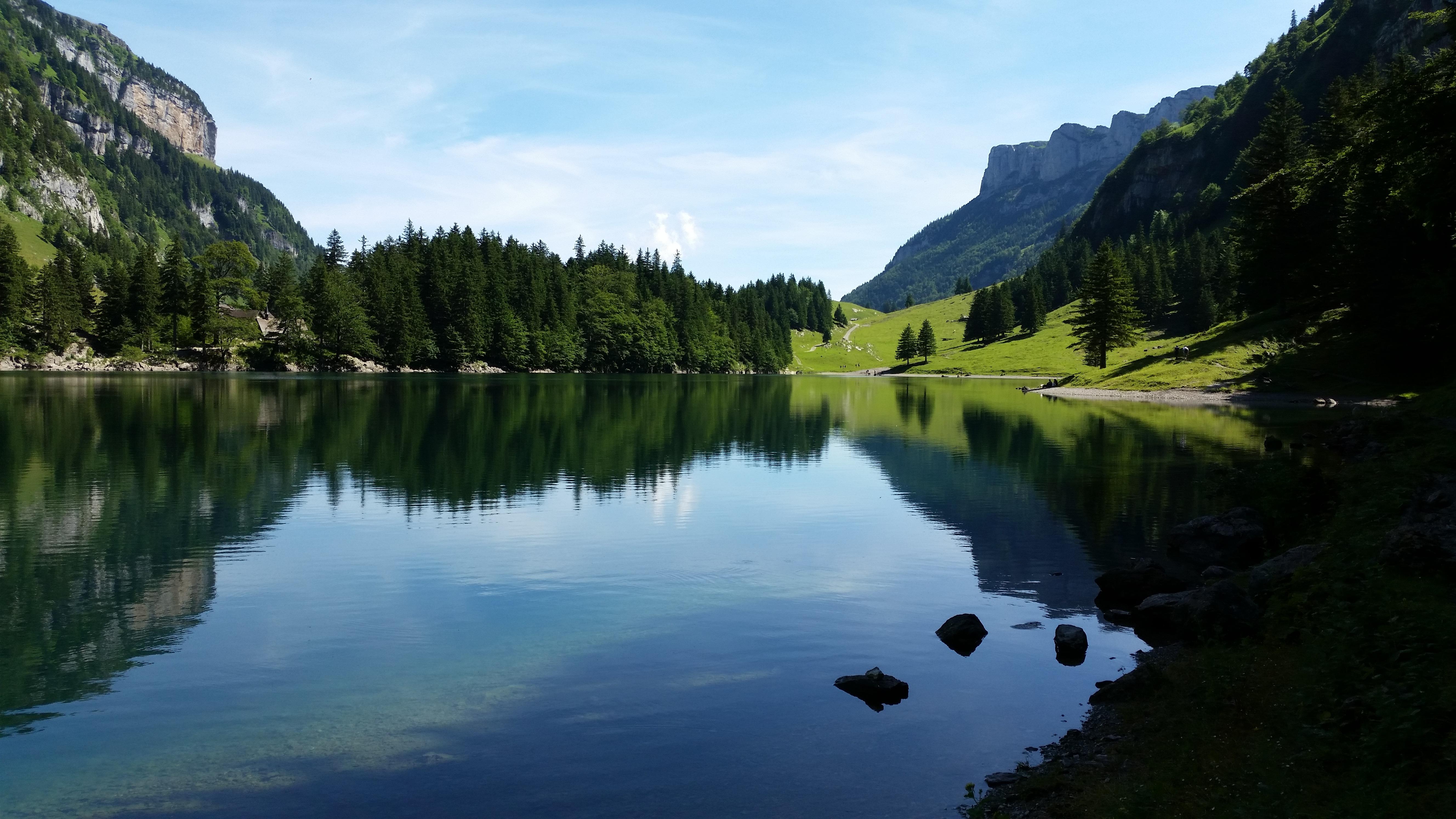 прищипывание крассулы картинки фото озера внутри гор сорт для