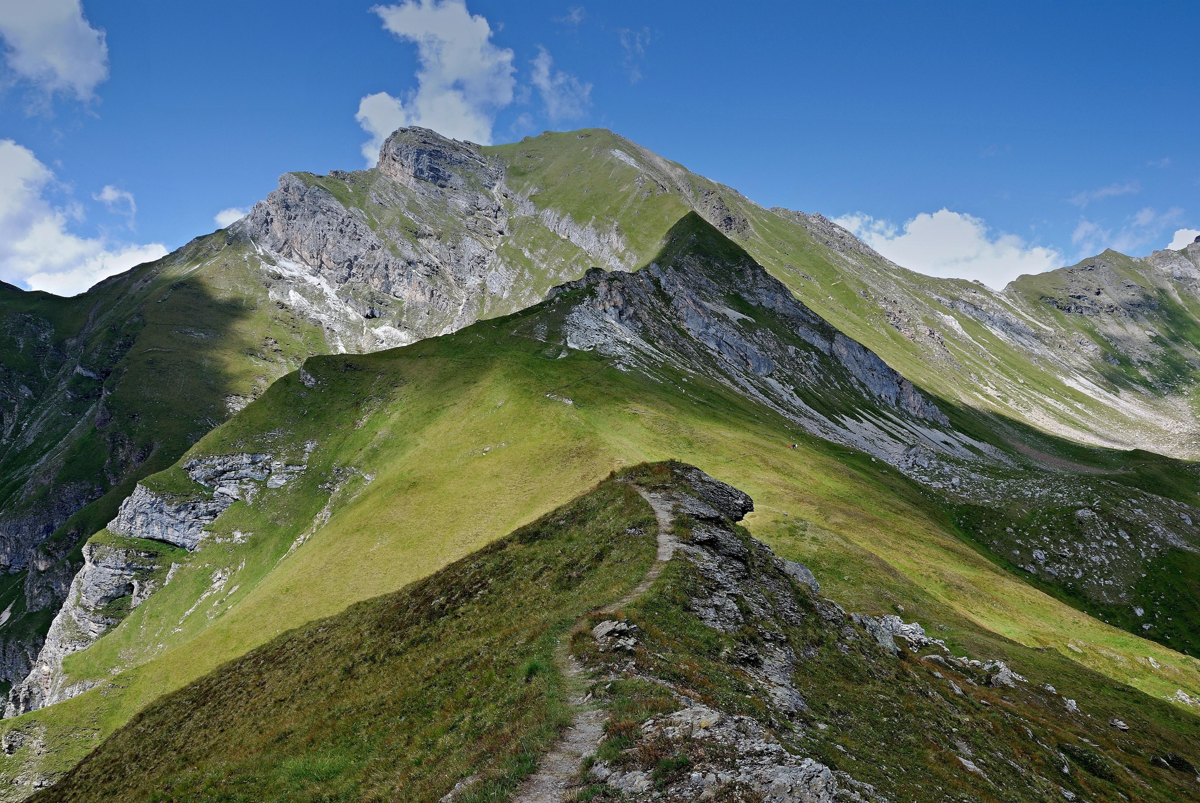 free images   landscape  wilderness  walking  light