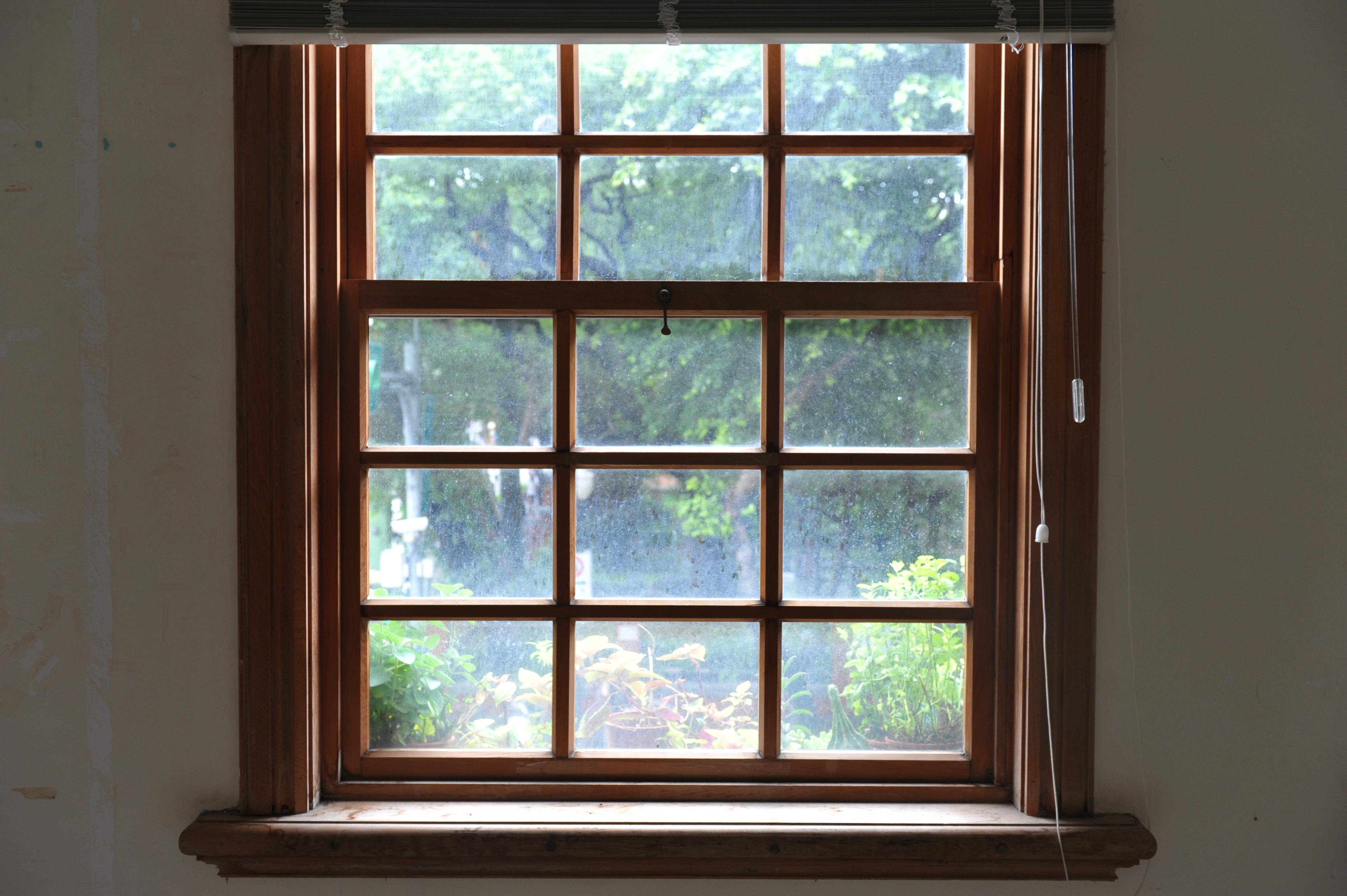 무료 이미지 경치 목재 유리 천장 거실 방 인테리어 디자인 창문들 일광 나무 머리