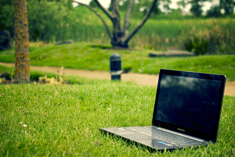 Laptop Notebook Computer Work Tree Nature Grass Lawn Meadow Sunlight Flower  Green Park Backyard Garden Leisure