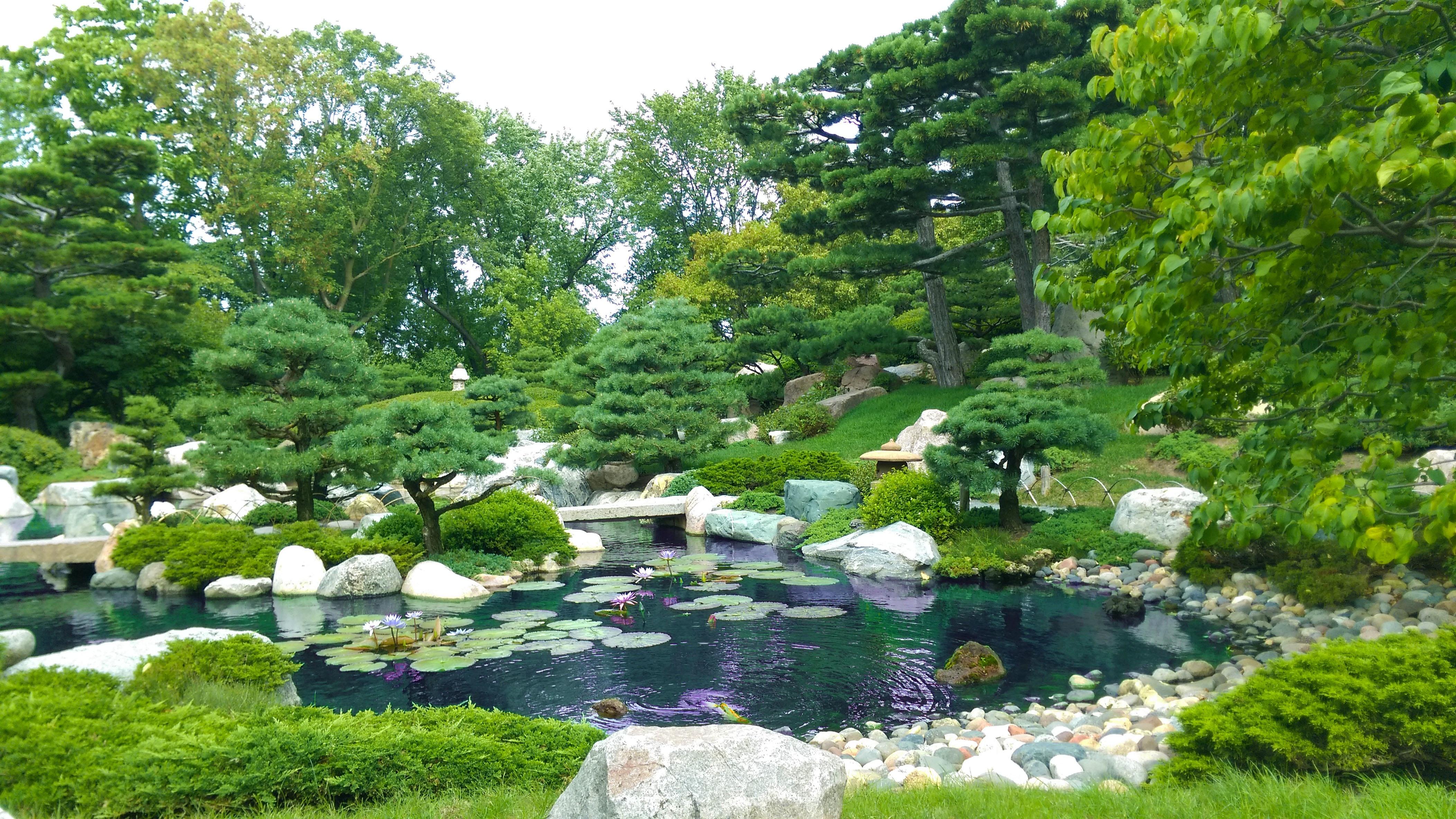 Lawn Flower Pond Backyard Botany Garden Landscaping Botanical Garden Yard  Ecosystem Landscape Architect Garden Designer