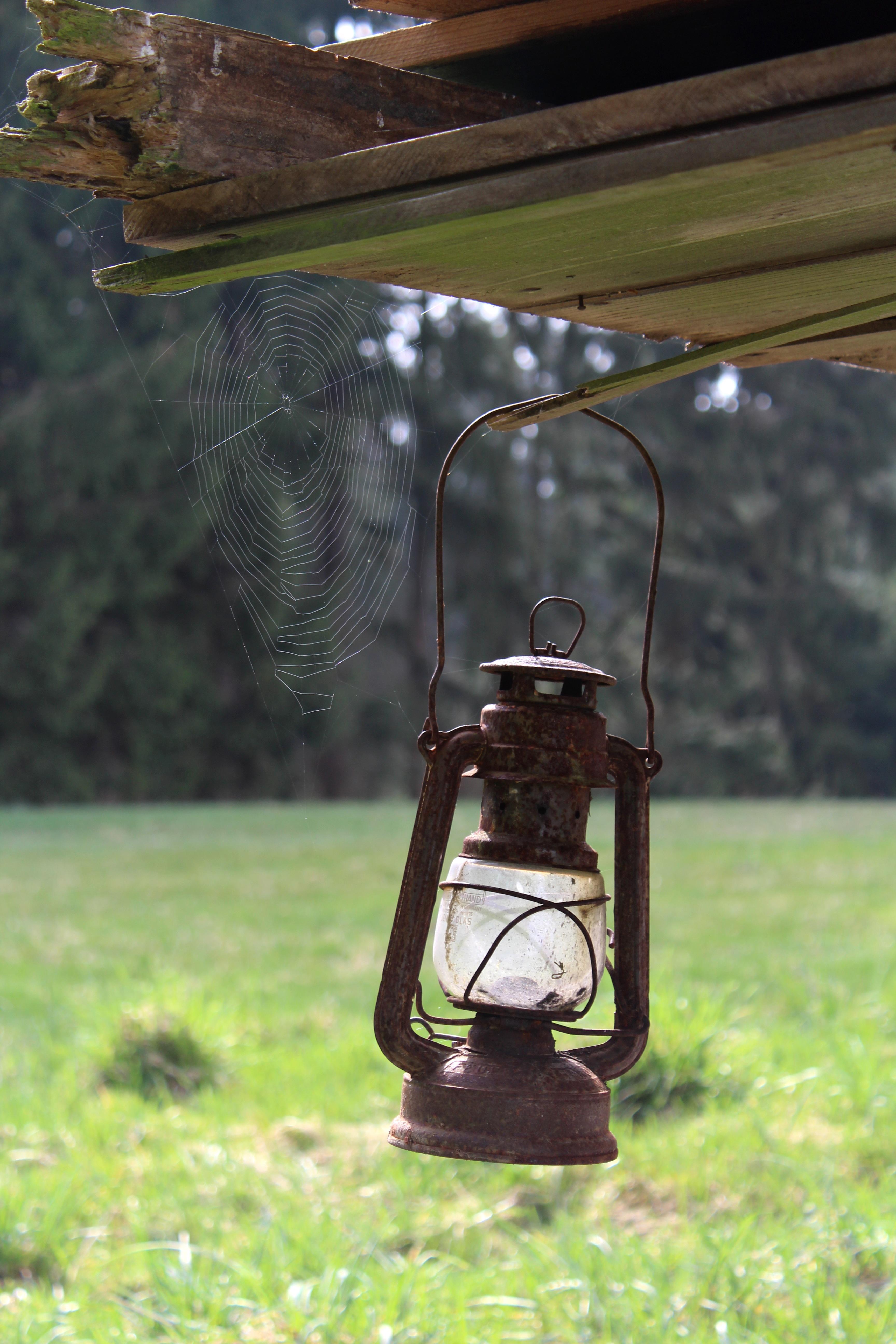 Gratuites pelouse vert lanterne lampe jardin