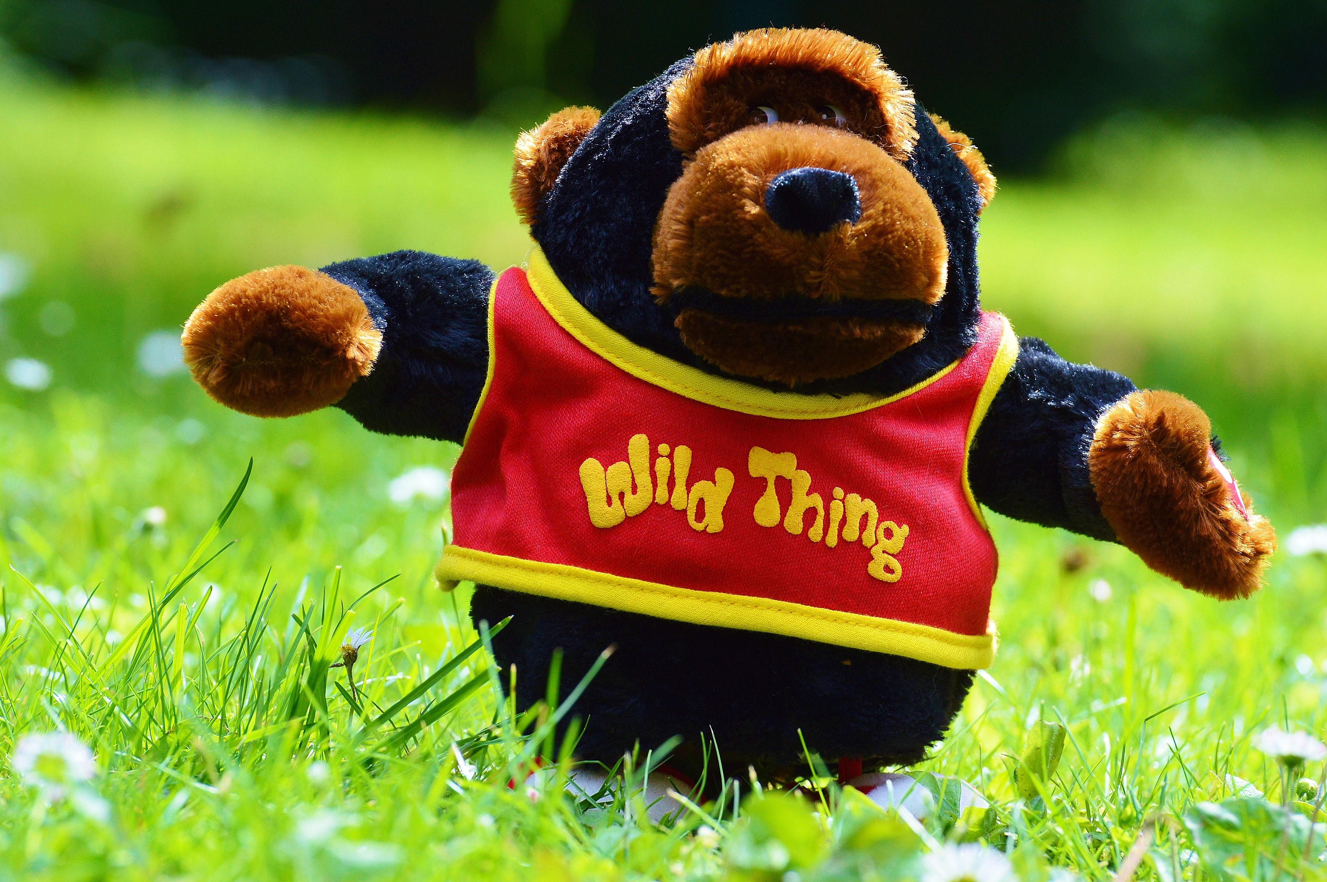 Bãi Cỏ Đồng Cỏ Dễ Thương Con Khỉ Đồ Chơi Gấu Bông Bọn Trẻ Đồ Chơi