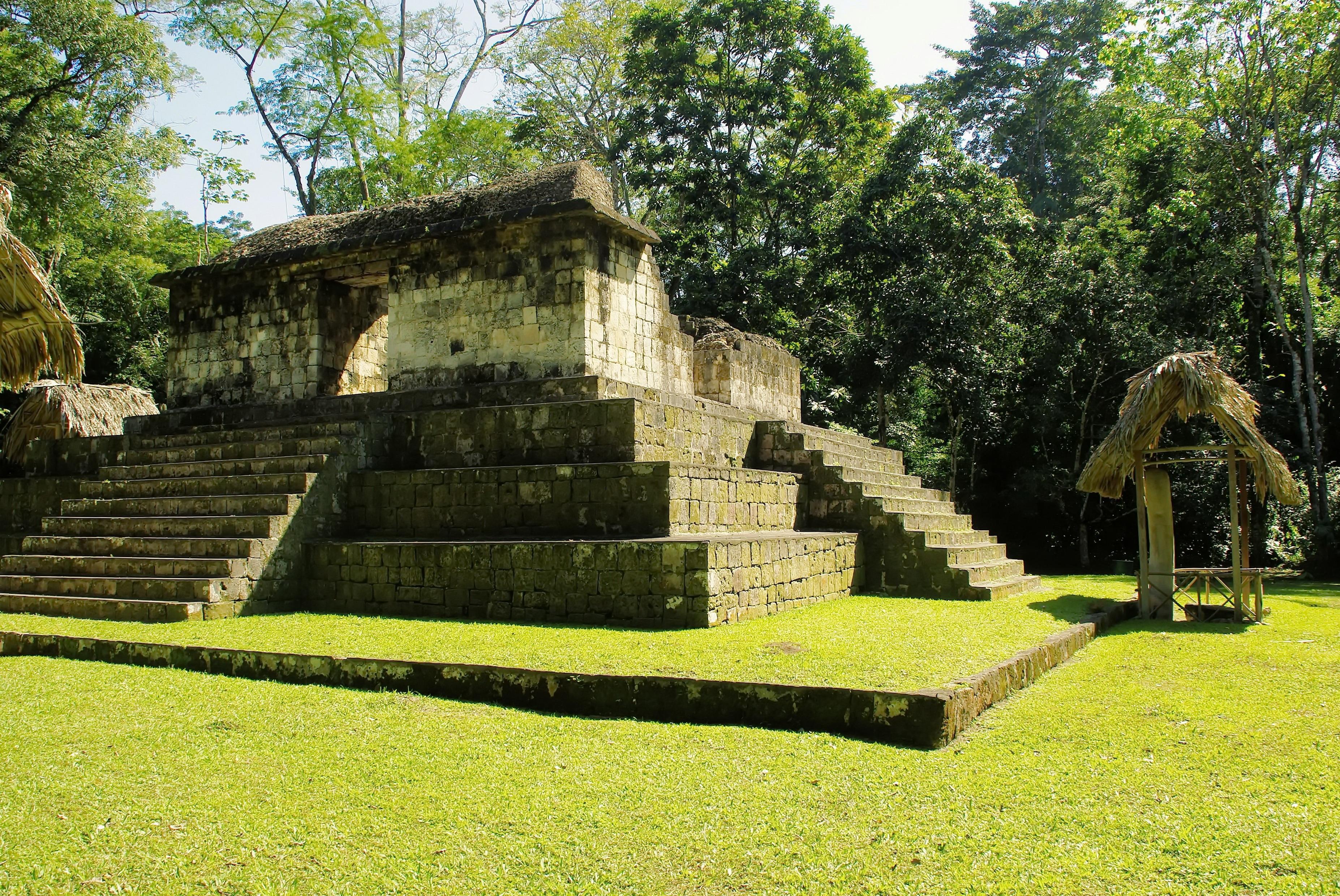 Lawn Pyramid Garden Ruins Rainforest Estate Maya Guatemala Archaeological  Site Sayaxche Ceibal