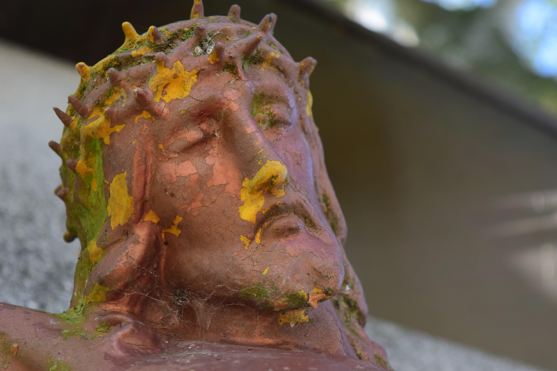 Fotos gratis : hoja, flor, Monumento, estatua, color, religión ...