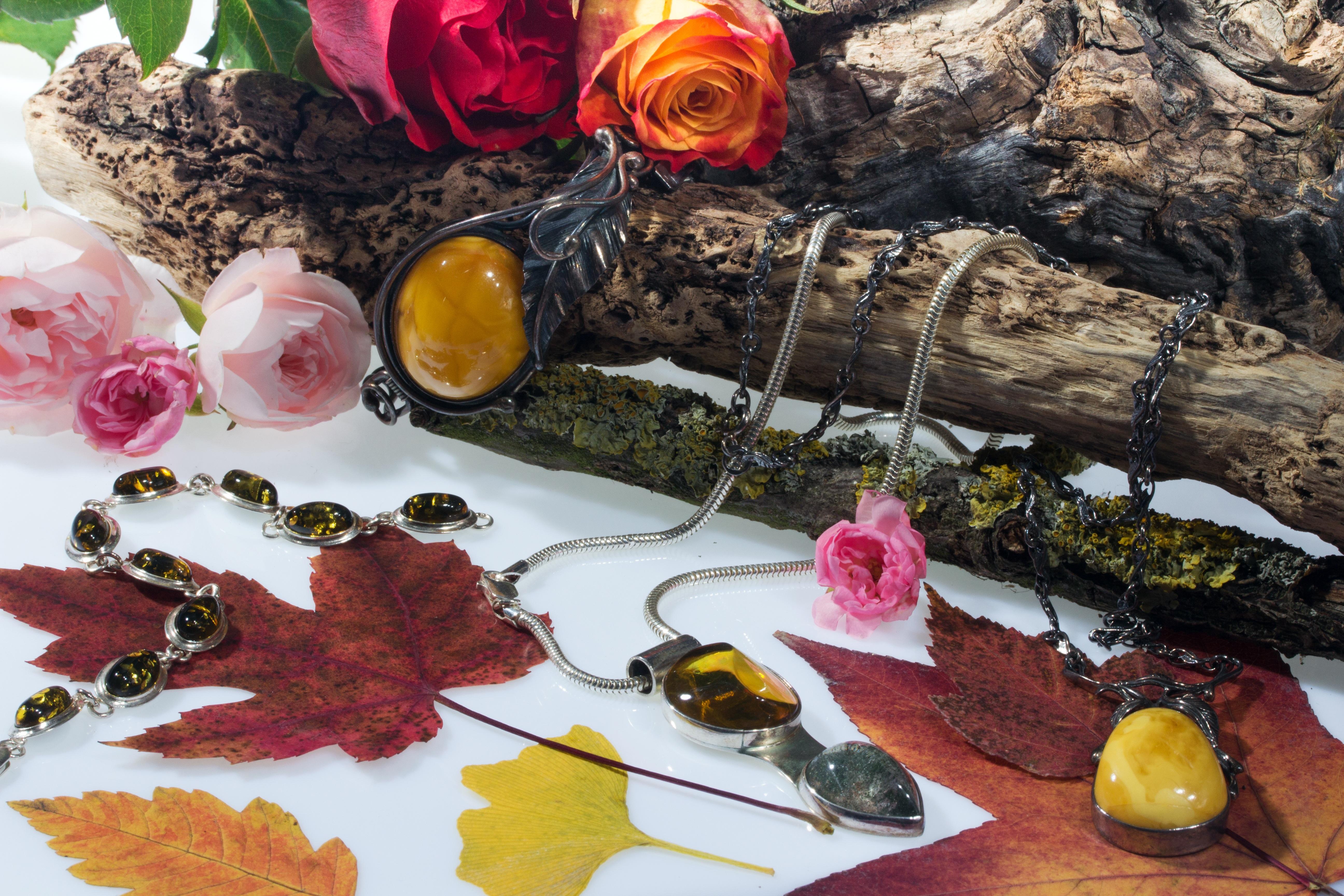 Fotoğraf Yaprak çiçek üretmek Sonbahar Natürmort Boyama