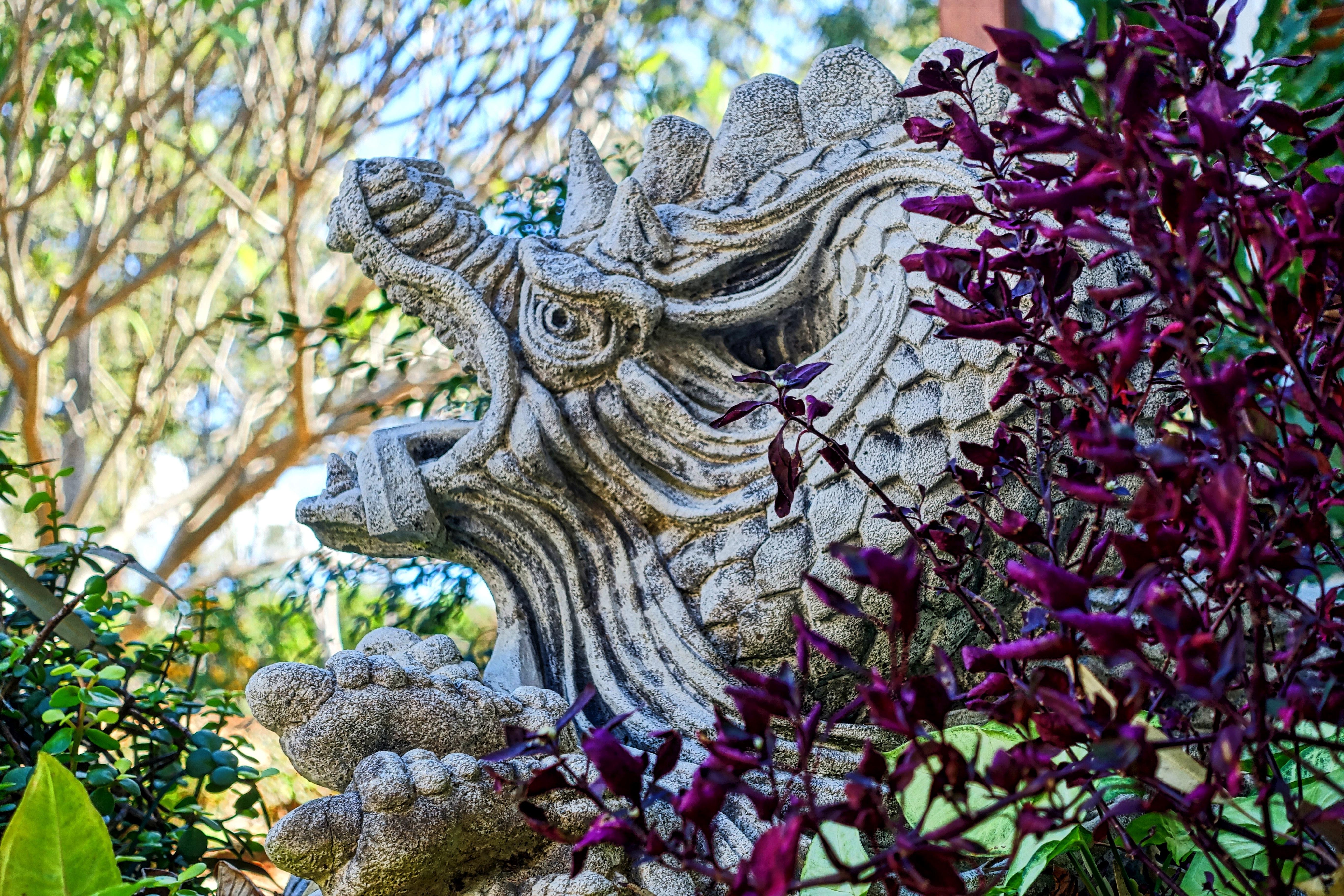 Gratuites feuille fleur statue chinois jungle