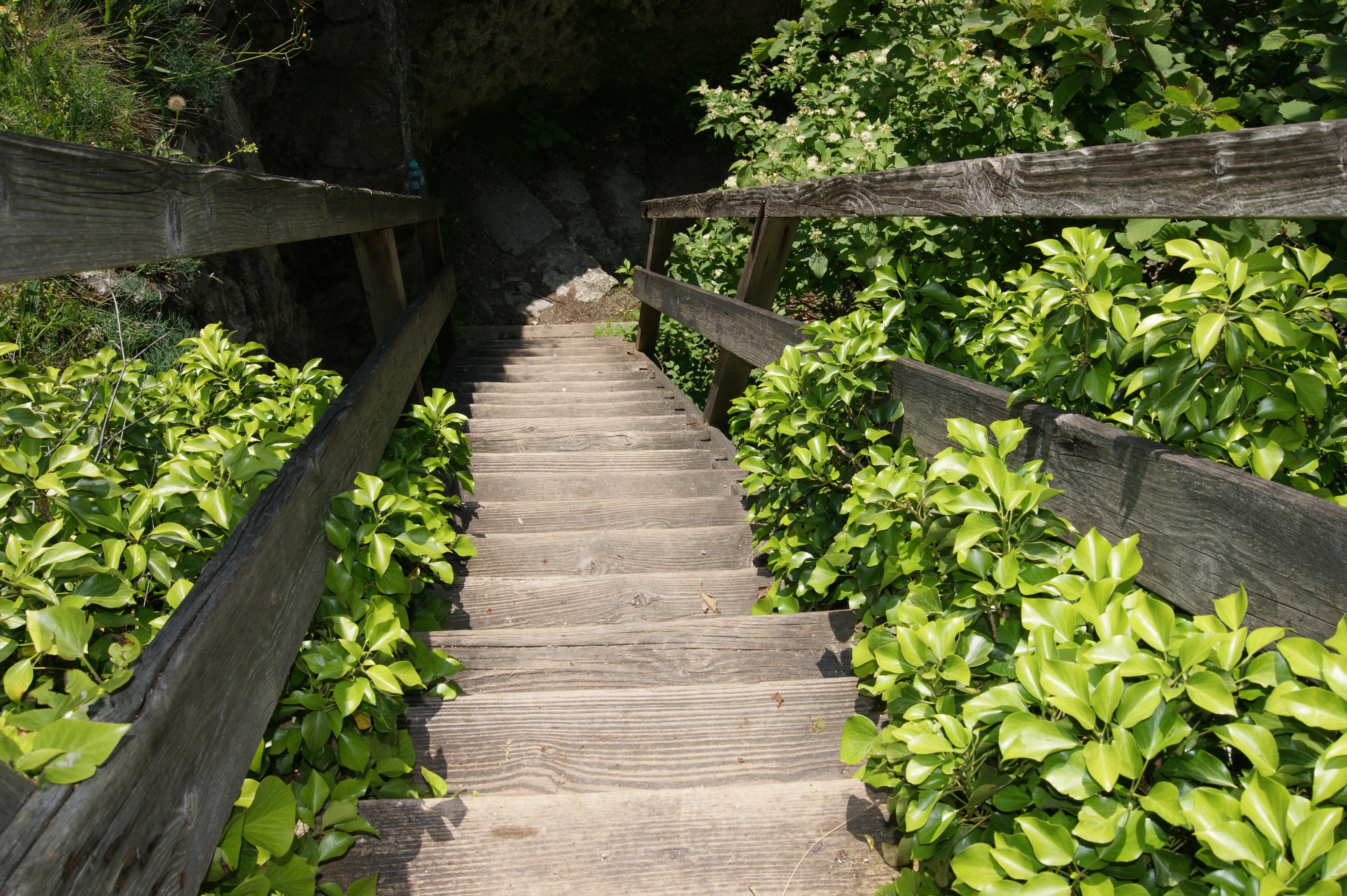лестница вверх и вниз фото