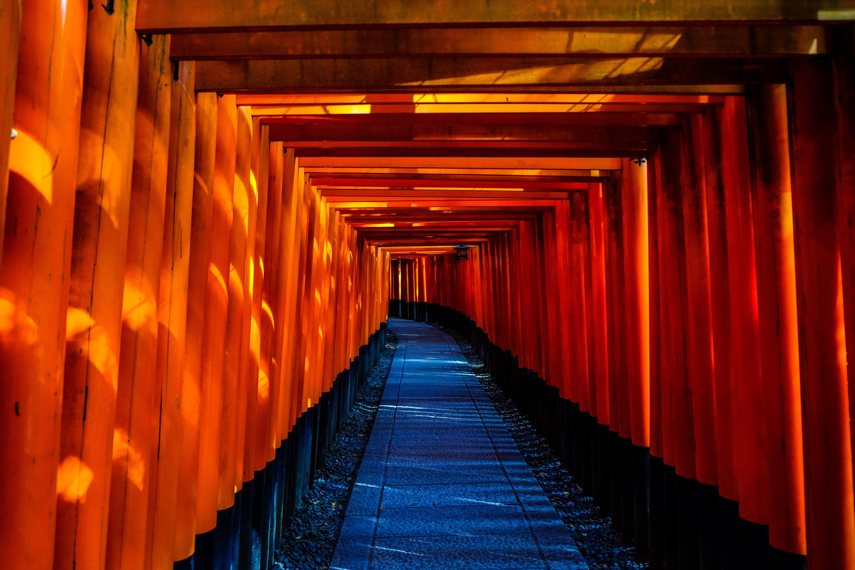 free images : light, architecture, wood, night, sunlight, city
