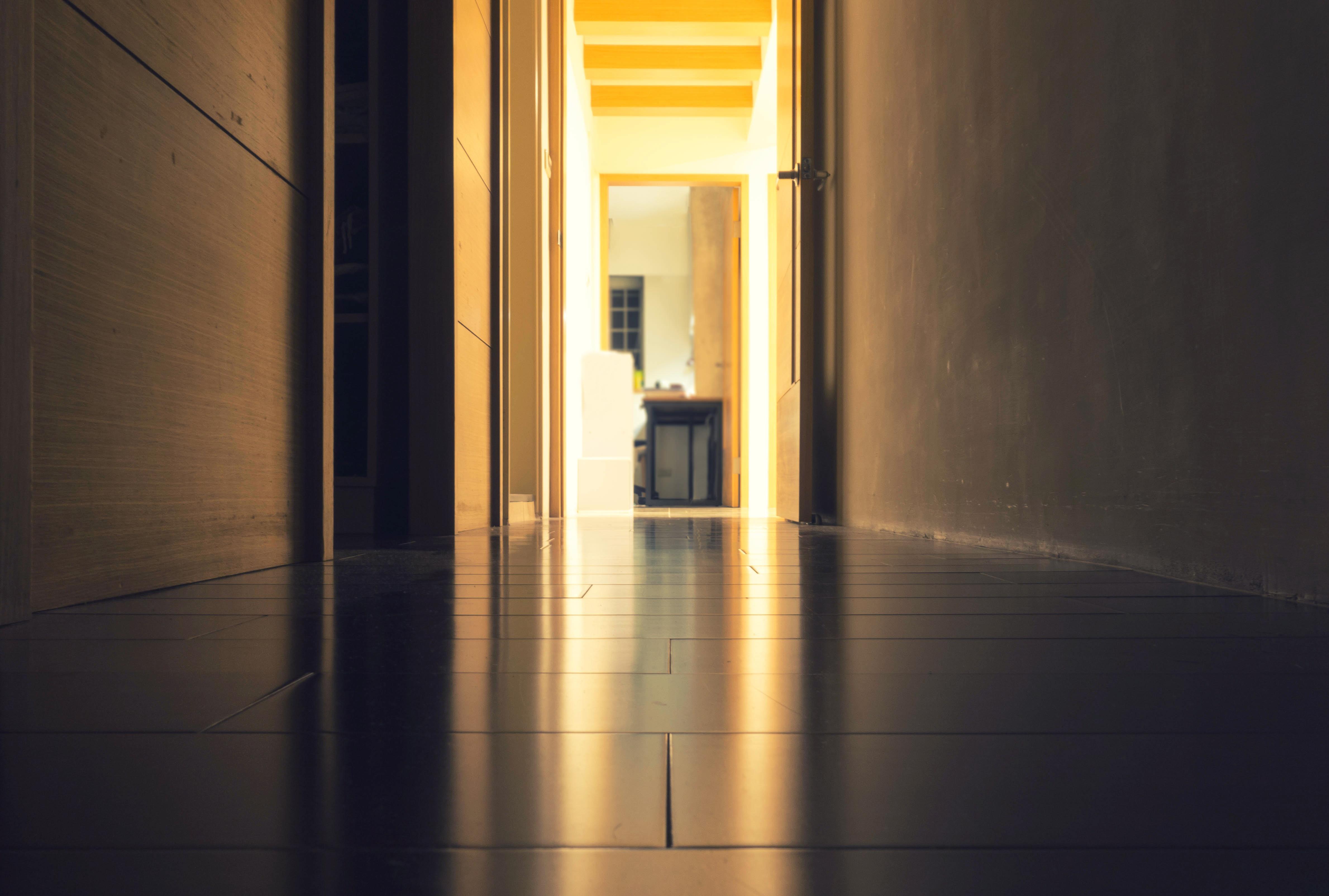 Corridor Design Color: Free Images : Light, Architecture, Wood, Sunlight, Floor