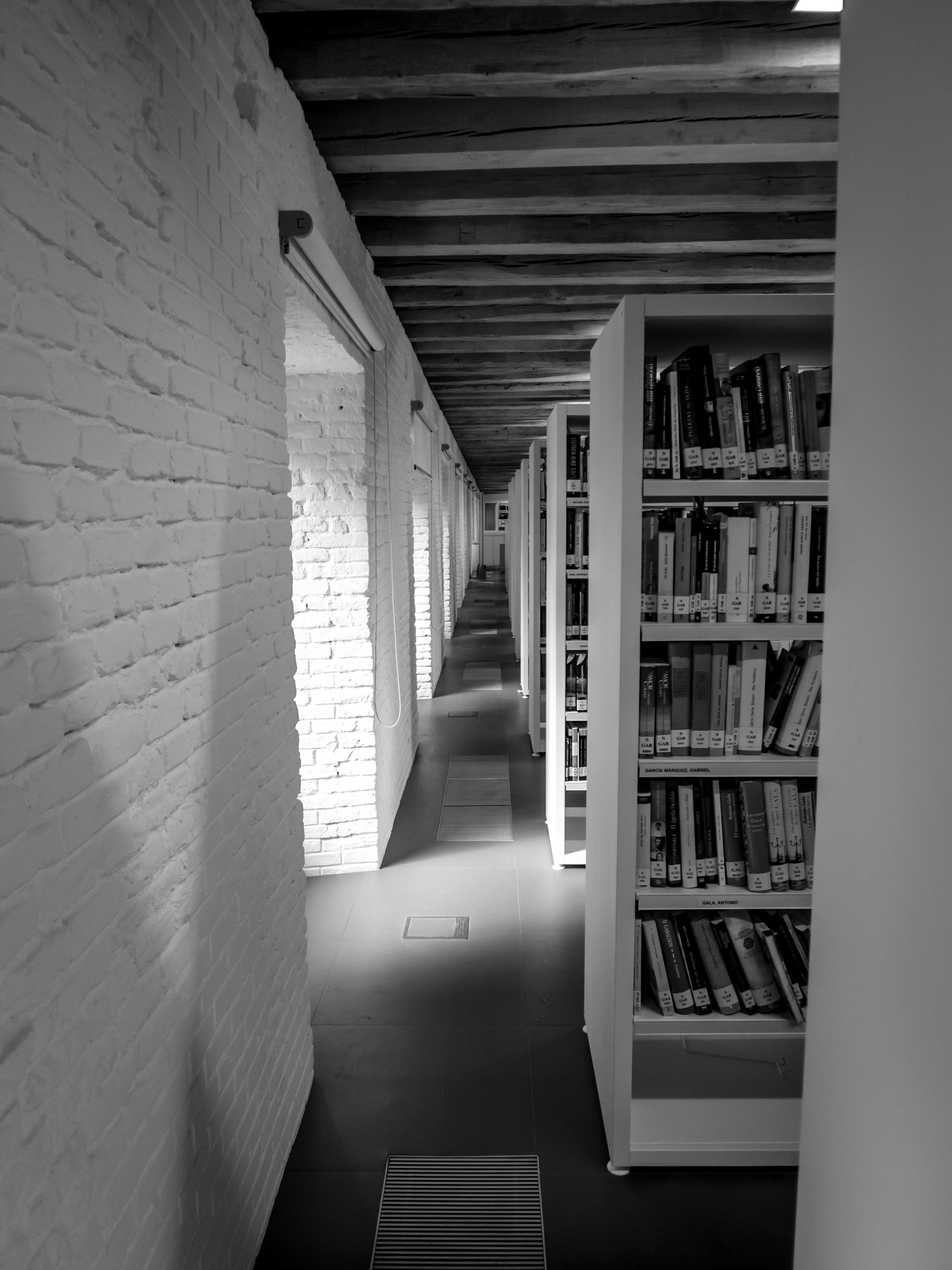 Книга свет в окне скачать бесплатно