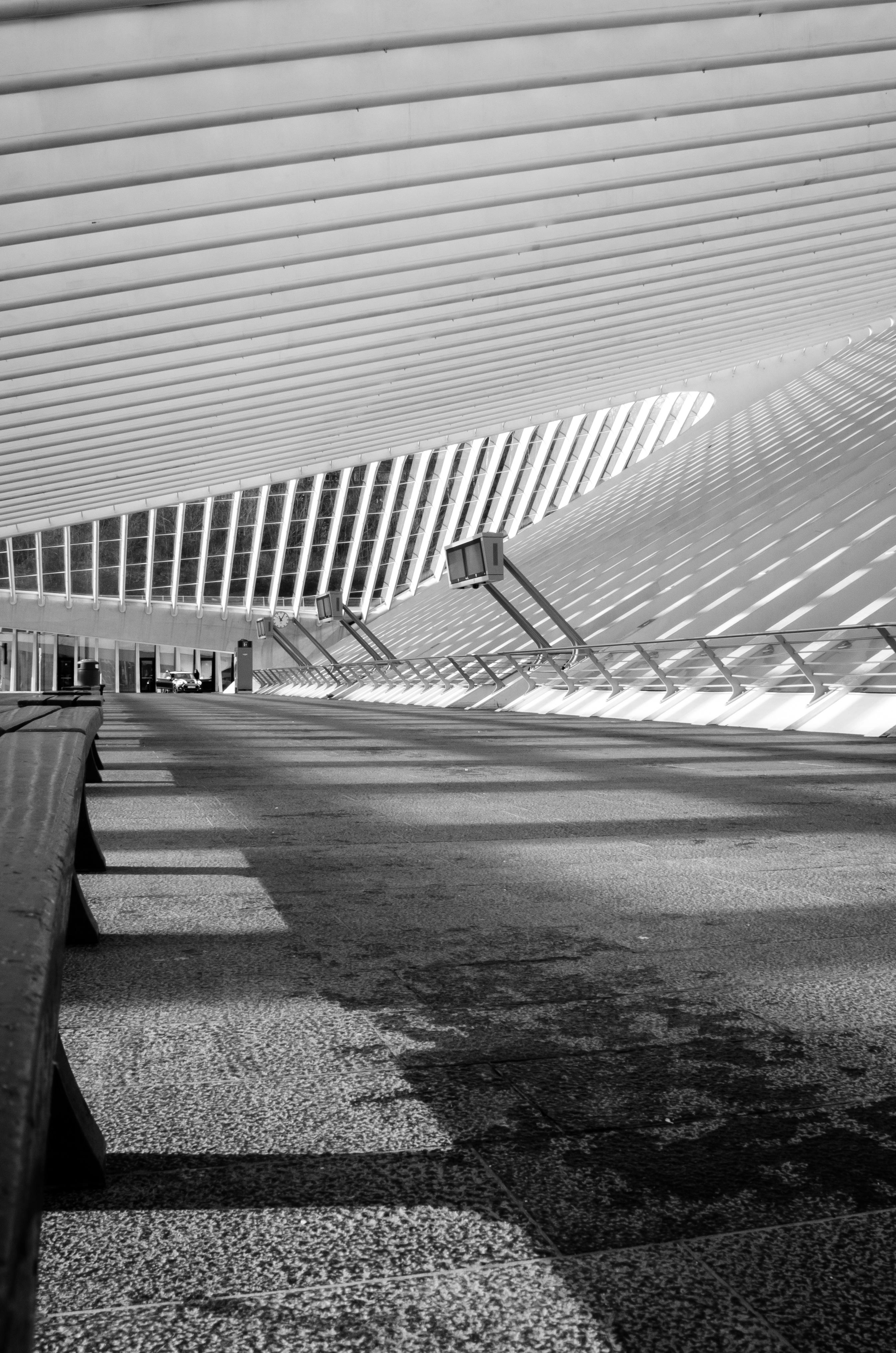 fotos gratis ligero en blanco y negro luz de sol vaso edificio tren transporte lnea monocromo blanco negro blgica lneas