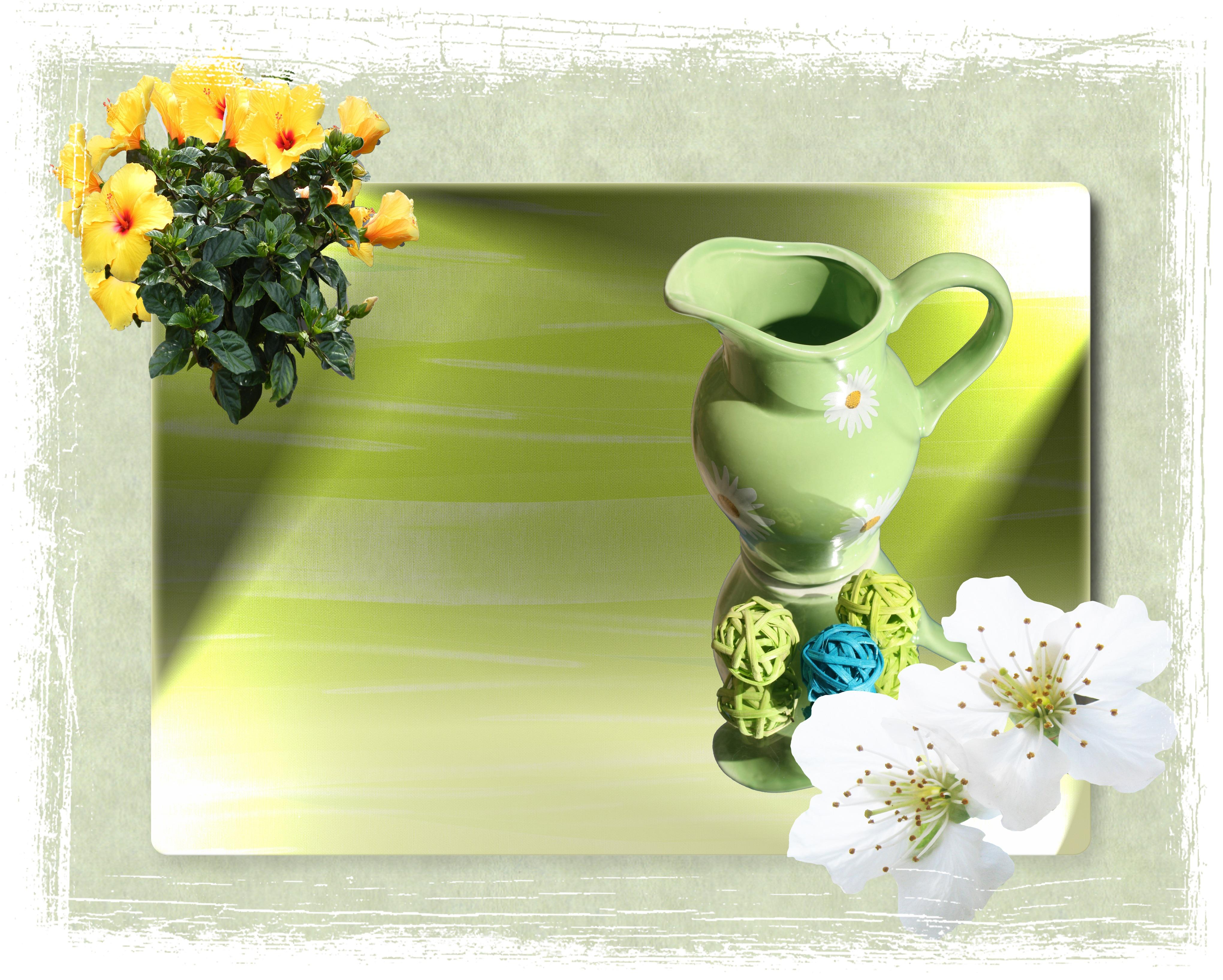 รูปภาพ : เบา, ดอกไม้, การตกแต่ง, ฤดูใบไม้ผลิ, การสะท้อน ...