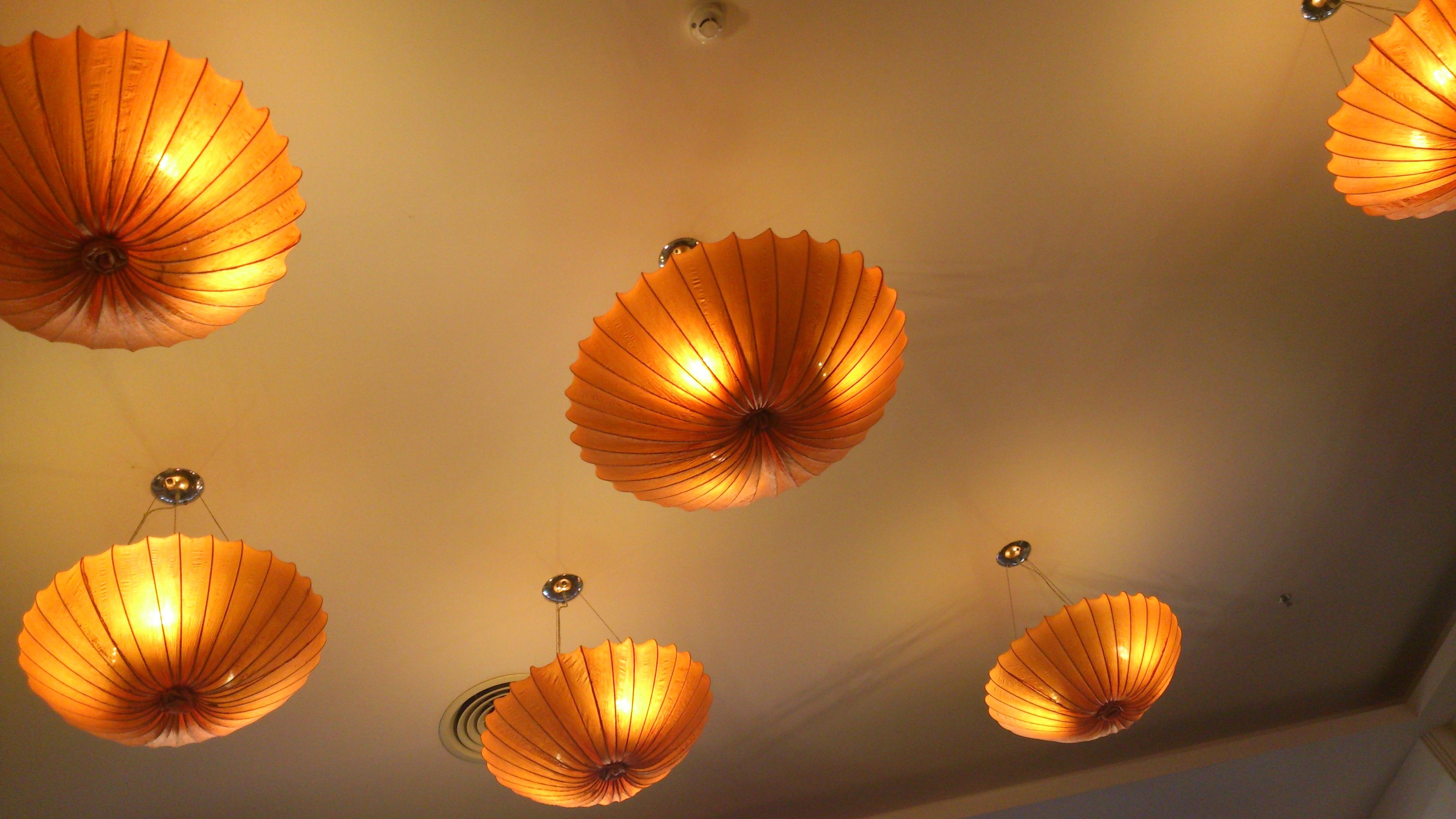 Free house sunlight flower petal ceiling orange