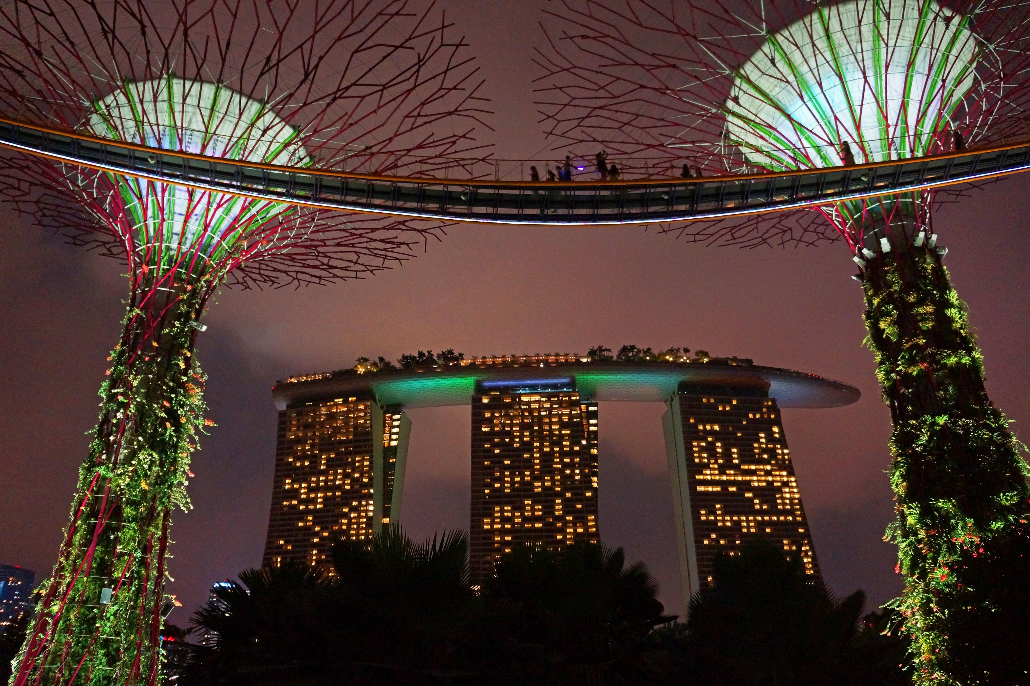 Free Images : light, night, flower, arch, evening, lighting ...